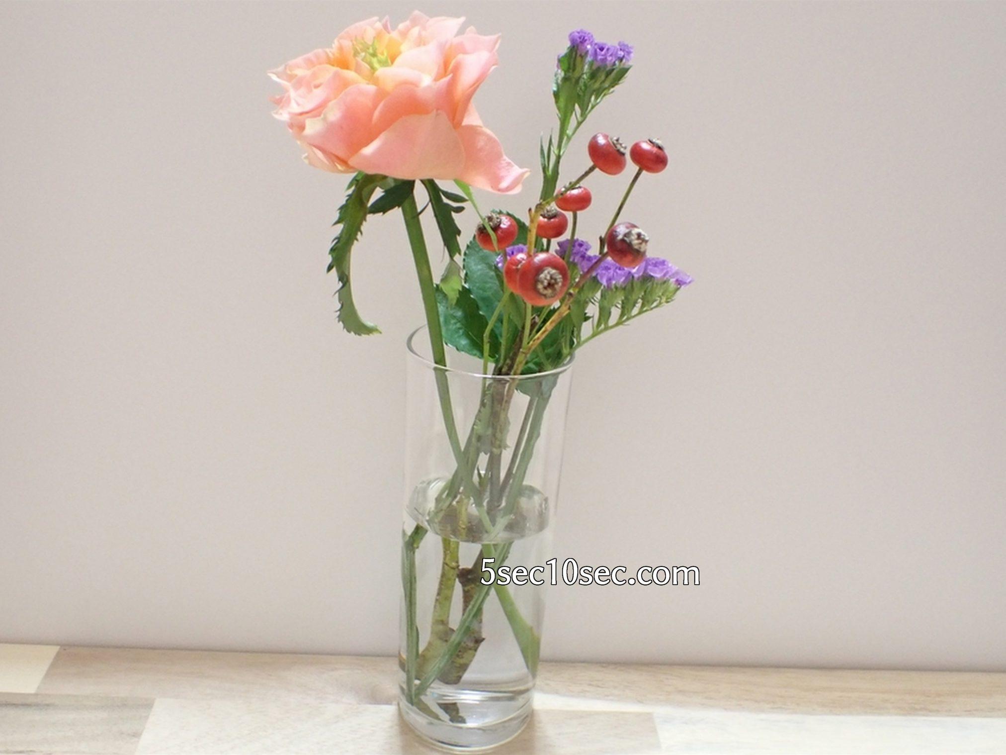 株式会社Crunch Style お花の定期便 Bloomee LIFE ブルーミーライフ 500円(税別・送料別)の体験プラン  1日目、初日、届いた日に撮った、お花の写真