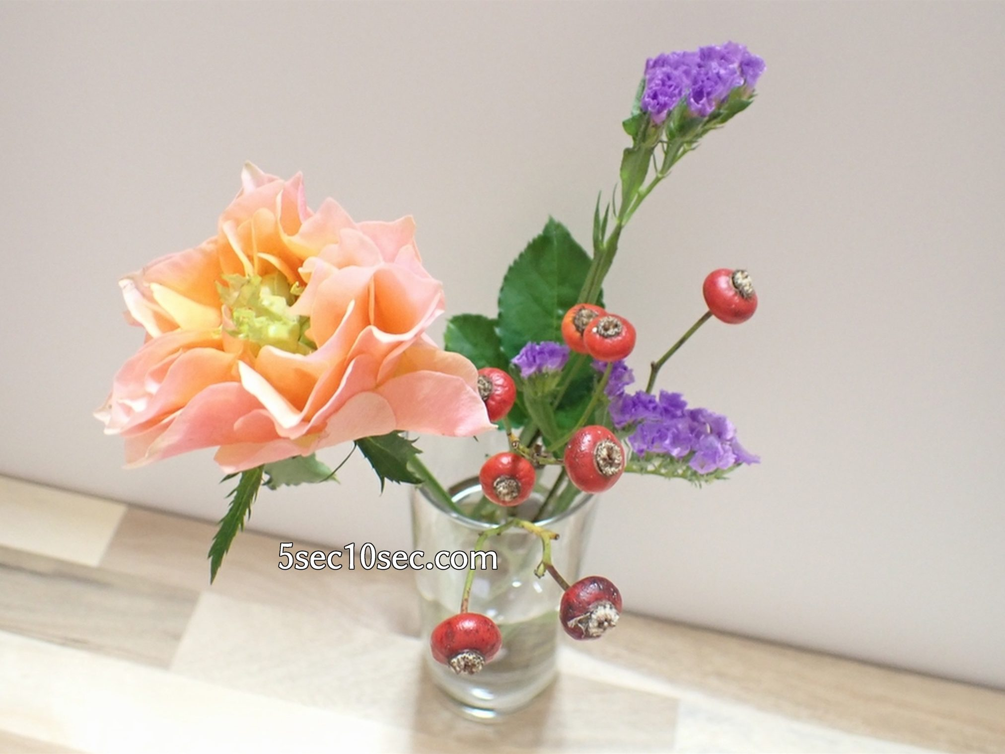 株式会社Crunch Style お花の定期便 Bloomee LIFE ブルーミーライフ 500円(税別・送料別)の体験プラン プロのお花屋さんのアレンジだから、花瓶にさすだけですぐにお花を楽しめます