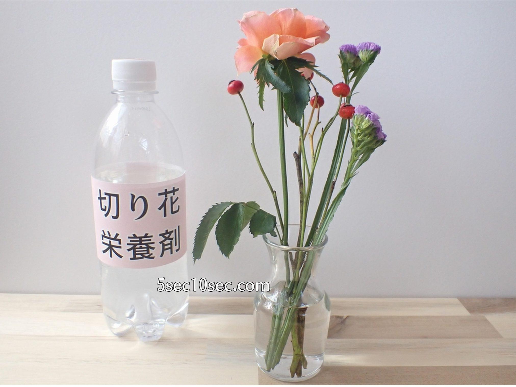 株式会社Crunch Style お花の定期便 Bloomee LIFE ブルーミーライフ 500円(税別・送料別)の体験プラン 切り花栄養剤、お花の延命剤が足りない時に、売っている場所は、お花屋さんです
