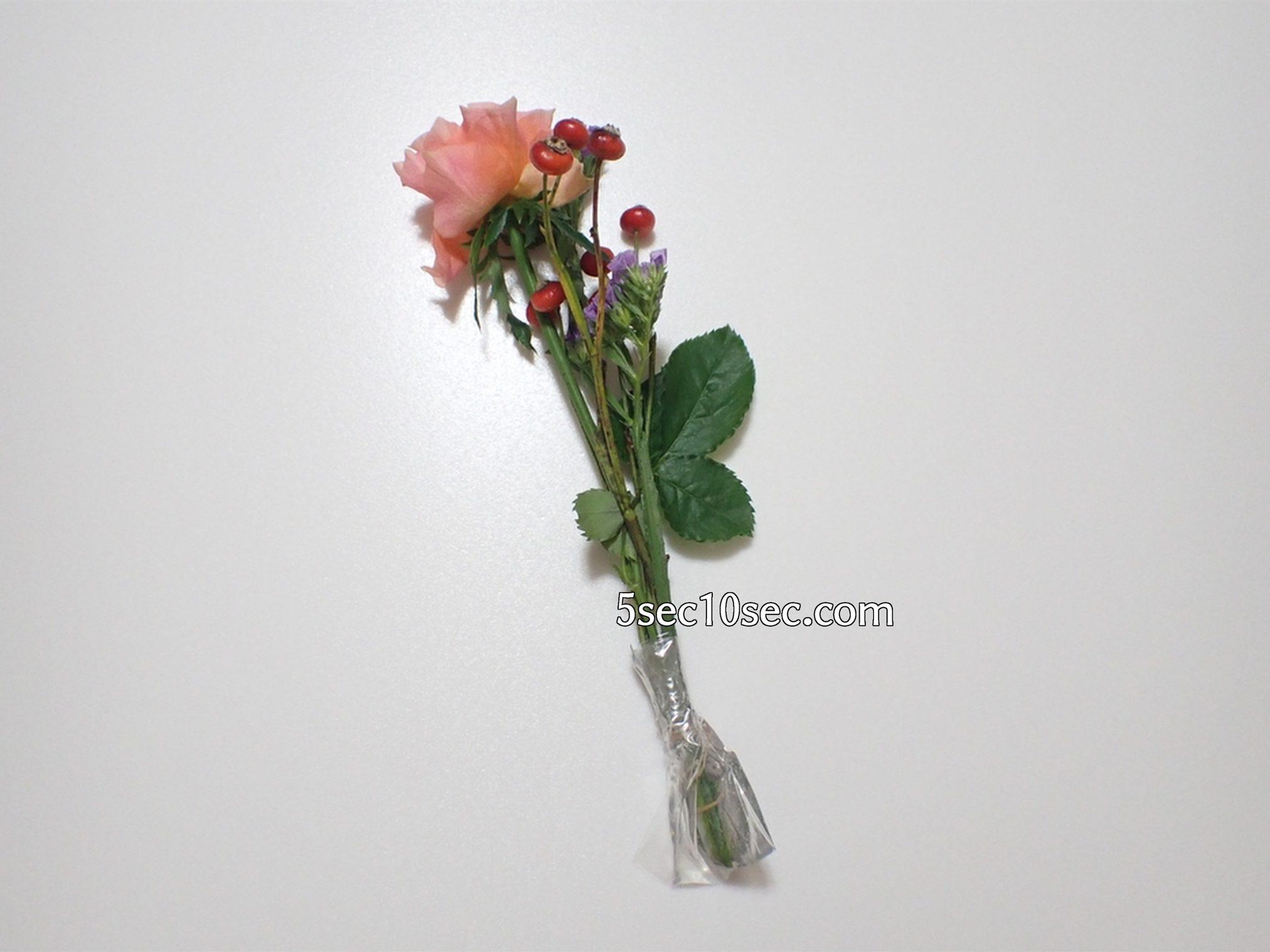 株式会社Crunch Style お花の定期便 Bloomee LIFE ブルーミーライフ 500円(税別・送料別)の体験プラン 包装紙を外した、お花の写真