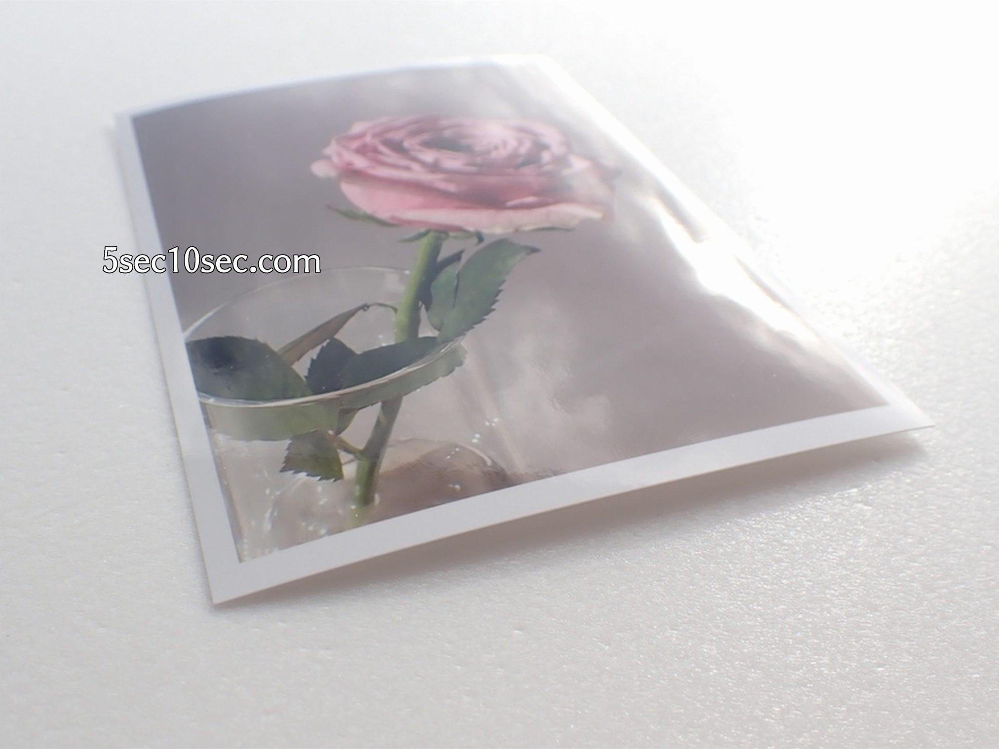 株式会社Crunch Style お花の定期便 Bloomee LIFE ブルーミーライフ レギュラープラン 写真用の用紙に印刷するとお店で現像プリントしたみたいなツヤツヤ、ツルツルの本物の写真みたいな写真が出来ます