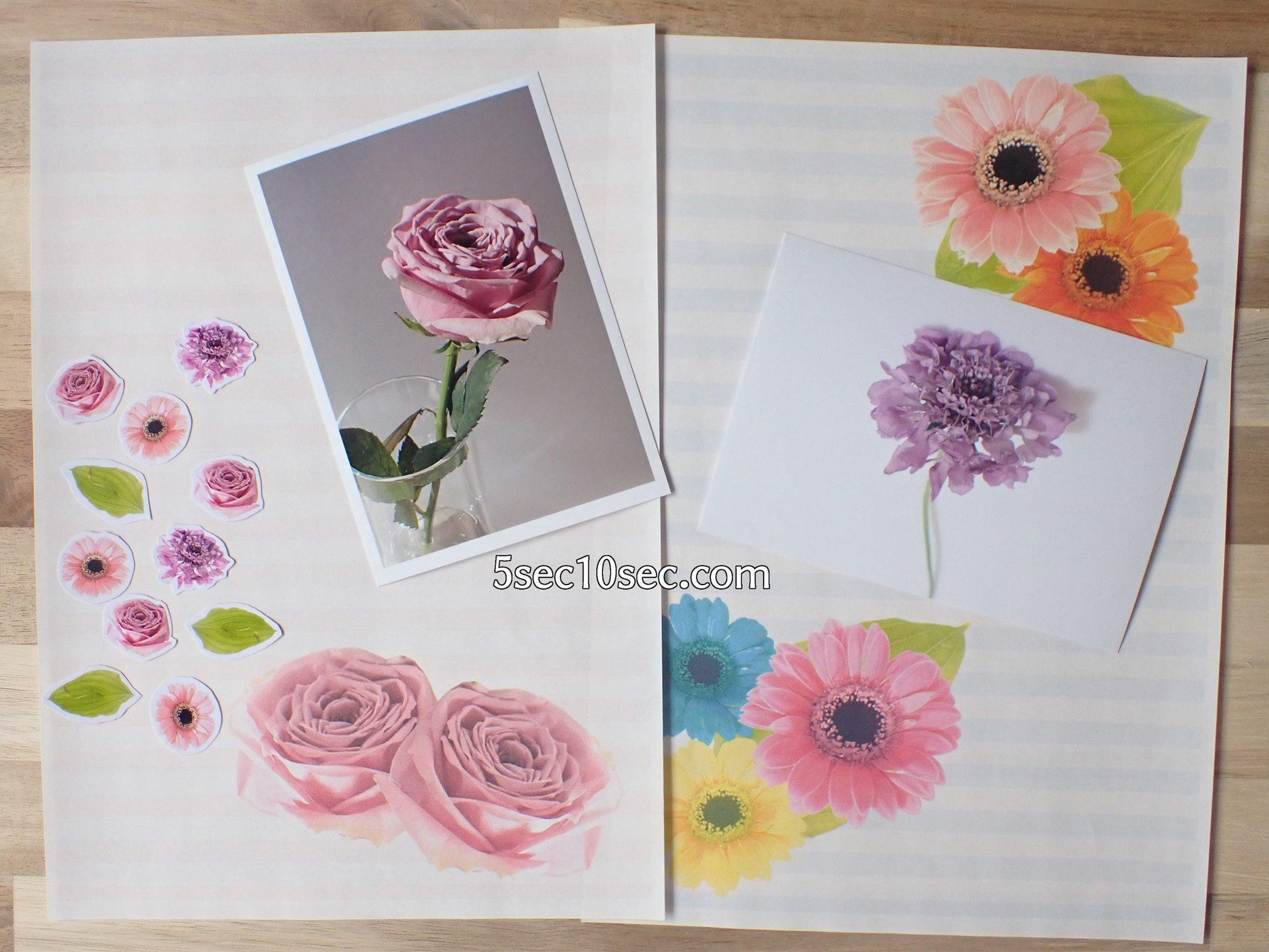 株式会社Crunch Style お花の定期便 Bloomee LIFE ブルーミーライフ レギュラープラン 生花、切り花をずっと楽しむ方法