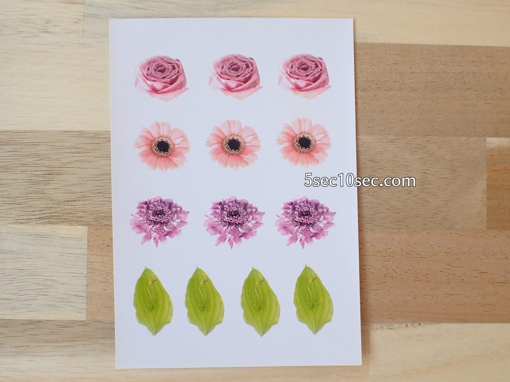 株式会社Crunch Style お花の定期便 Bloomee LIFE ブルーミーライフ レギュラープラン 切り花、生花を使って作ったシール、シール用紙に印刷して作りました