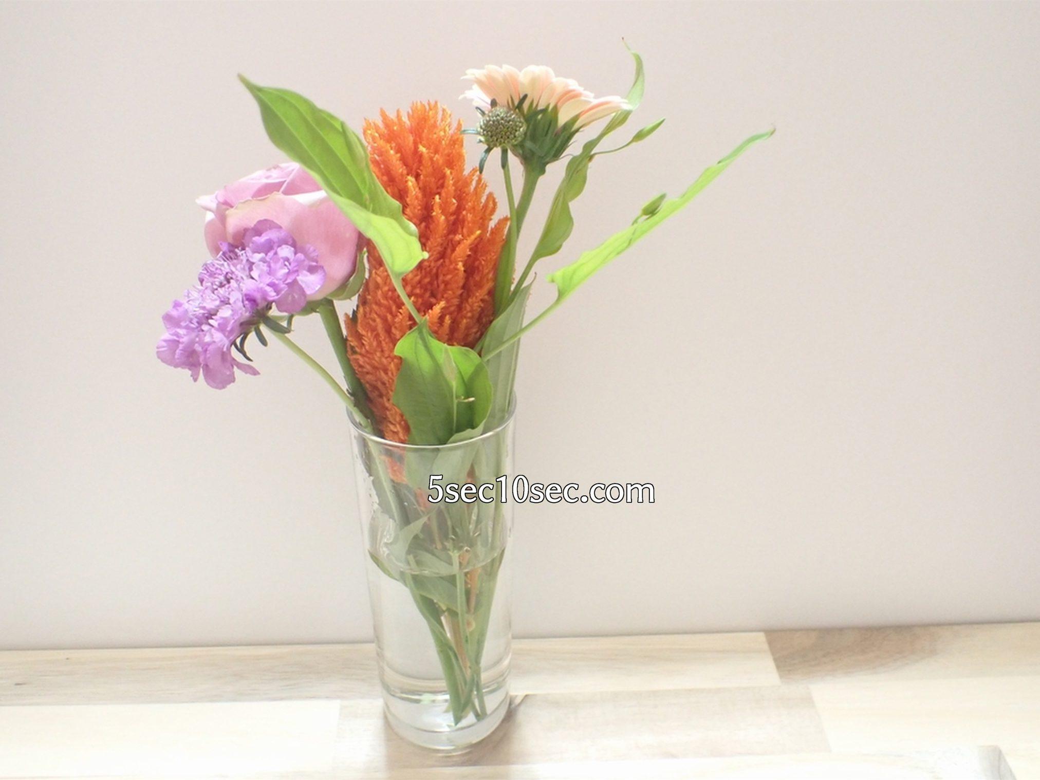 株式会社Crunch Style お花の定期便 Bloomee LIFE ブルーミーライフ レギュラープラン 細長いグラス、シリンダータイプの花瓶に挿すとこういう感じです