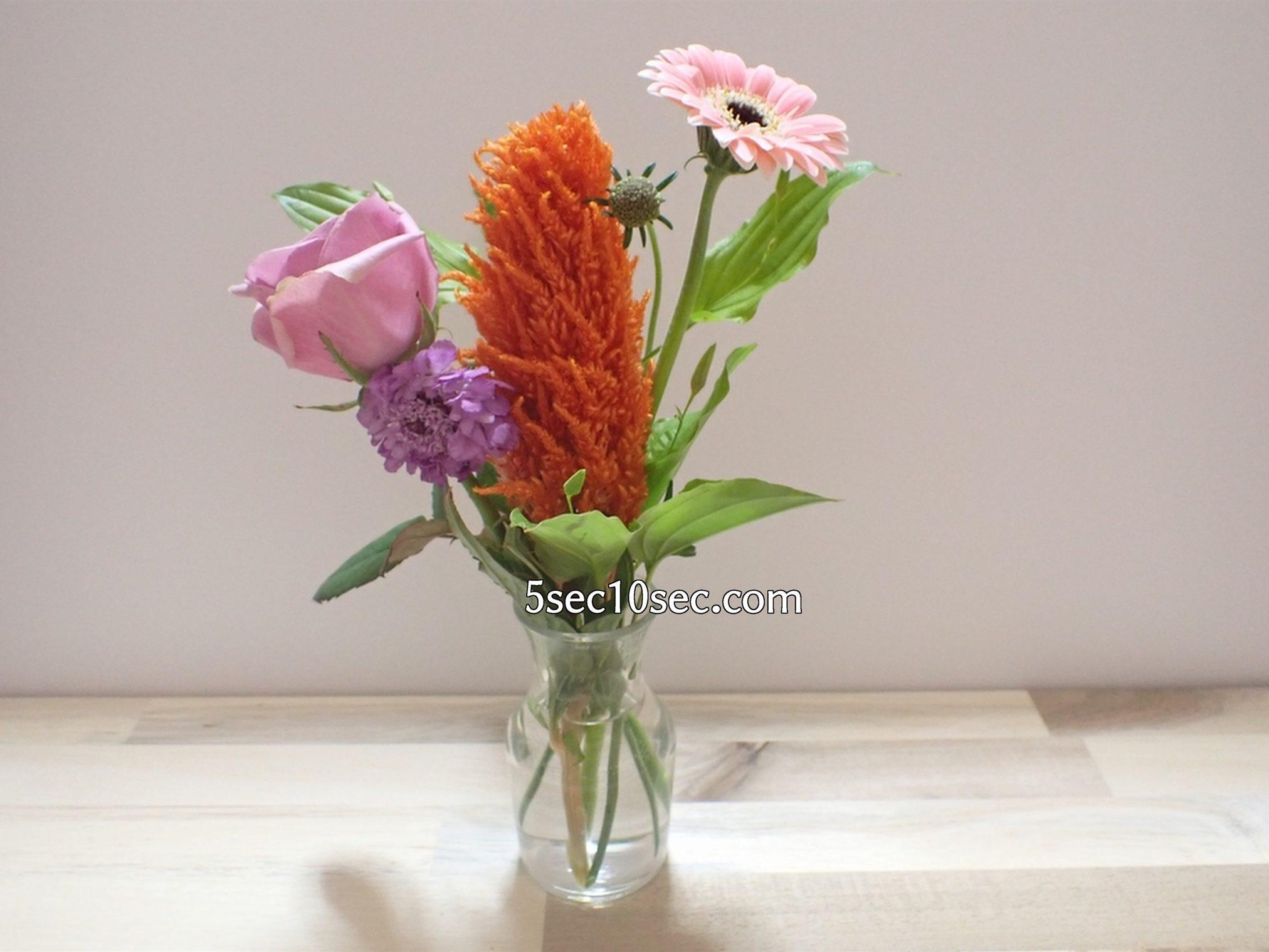株式会社Crunch Style お花の定期便 Bloomee LIFE ブルーミーライフ レギュラープラン 葉が多い時は背の低い小瓶タイプの花瓶の方が適していると思いました