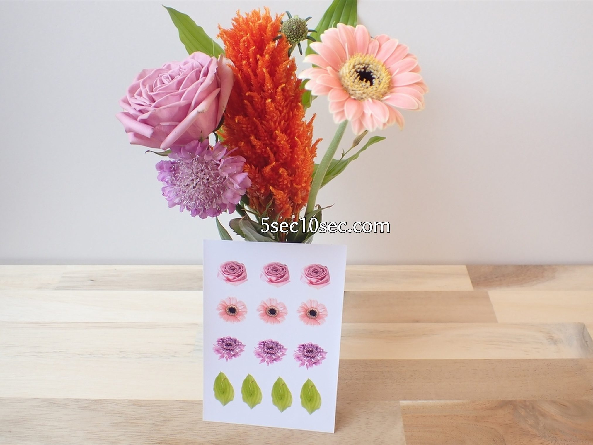 株式会社Crunch Style お花の定期便 Bloomee LIFE ブルーミーライフ レギュラープラン 切り花、生花を使って家庭用プリンターで自作シールを作ってみた