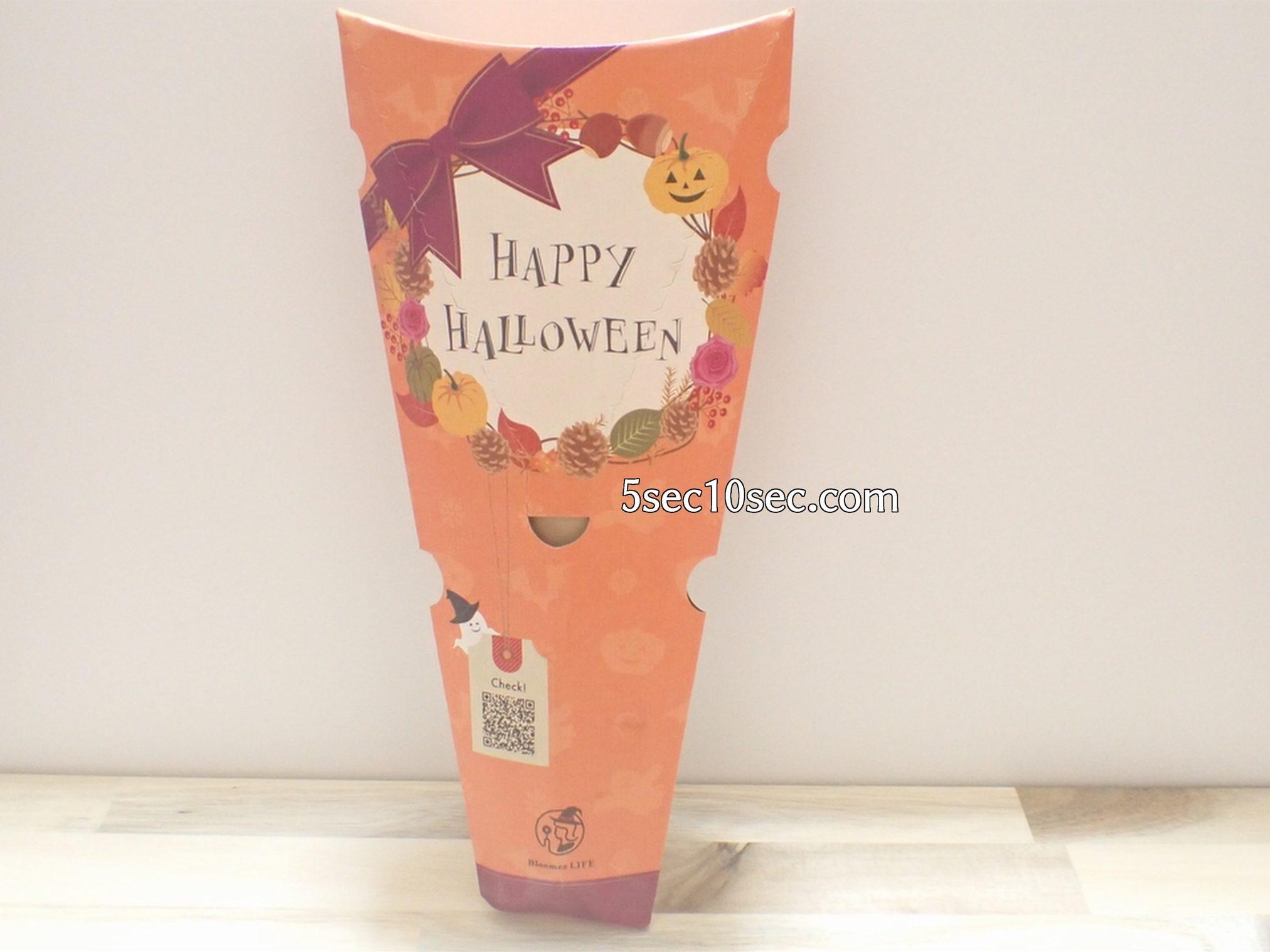 株式会社Crunch Style お花の定期便 Bloomee LIFE ブルーミーライフ レギュラープラン ハロウィンパッケージ このように届きます