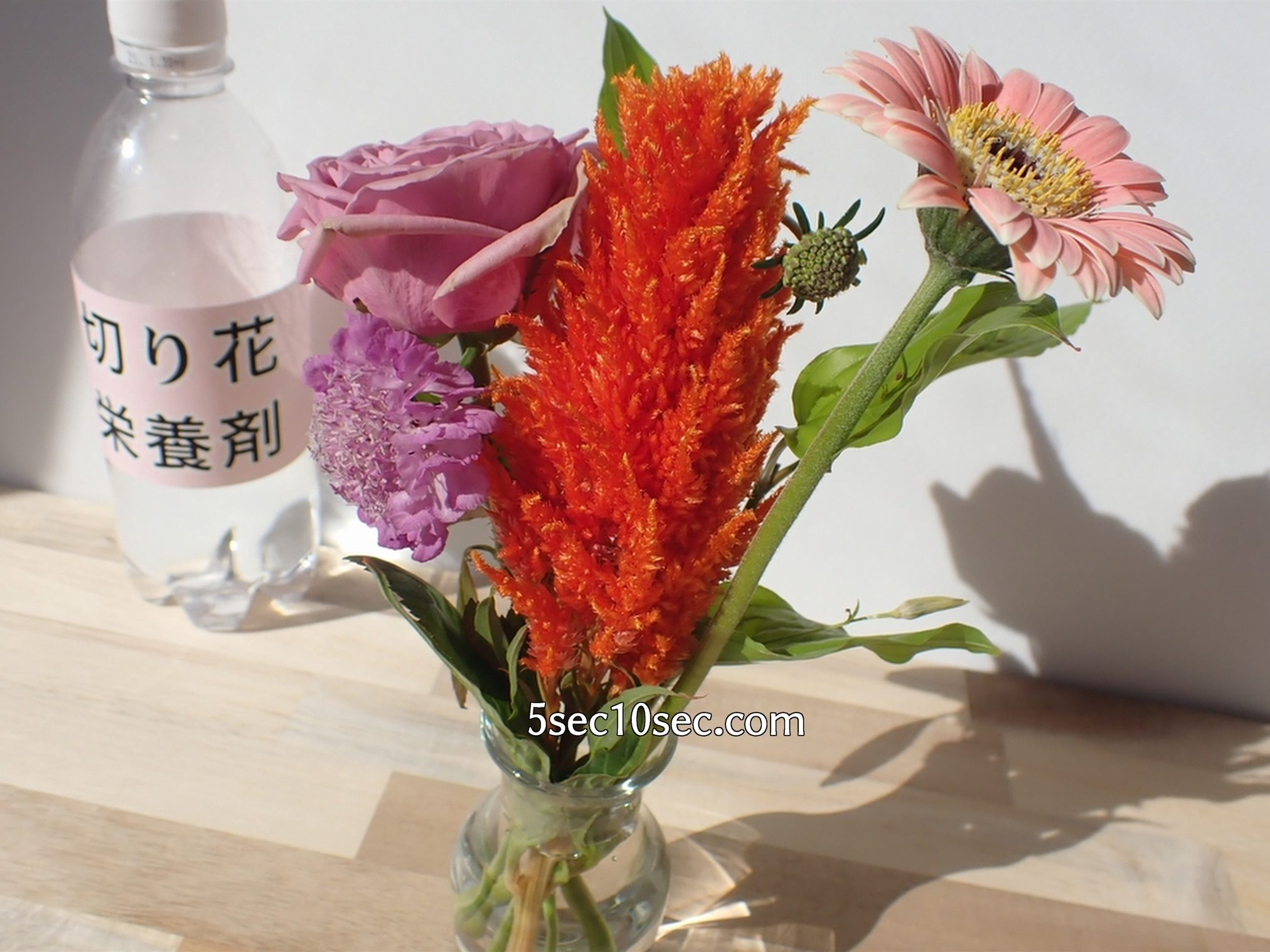 株式会社Crunch Style お花の定期便 Bloomee LIFE ブルーミーライフ レギュラープラン 6日目、自分で用意した市販の切り花栄養剤・延命剤を使って水換えをしています