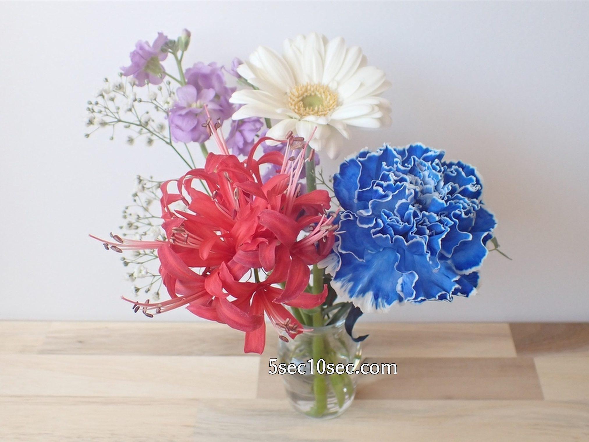 株式会社Crunch Style お花の定期便 Bloomee LIFE ブルーミーライフ 800円のレギュラープラン 水換えの頻度は1週間に一度くらいでも大丈夫です