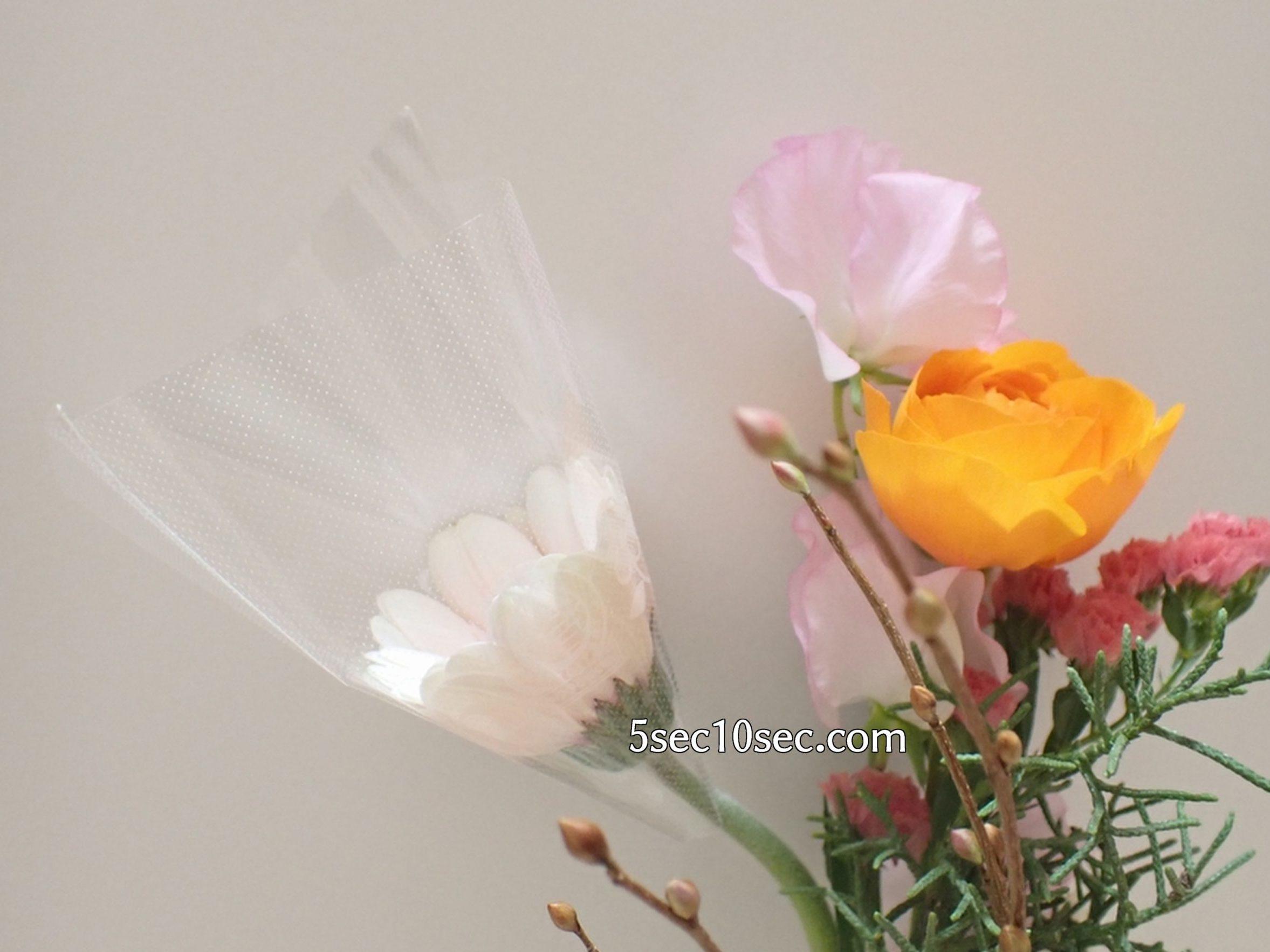 株式会社Crunch Style お花の定期便 Bloomee LIFE ブルーミーライフ 800円のレギュラープラン ガーベラは個別に保護して送ってもらえました