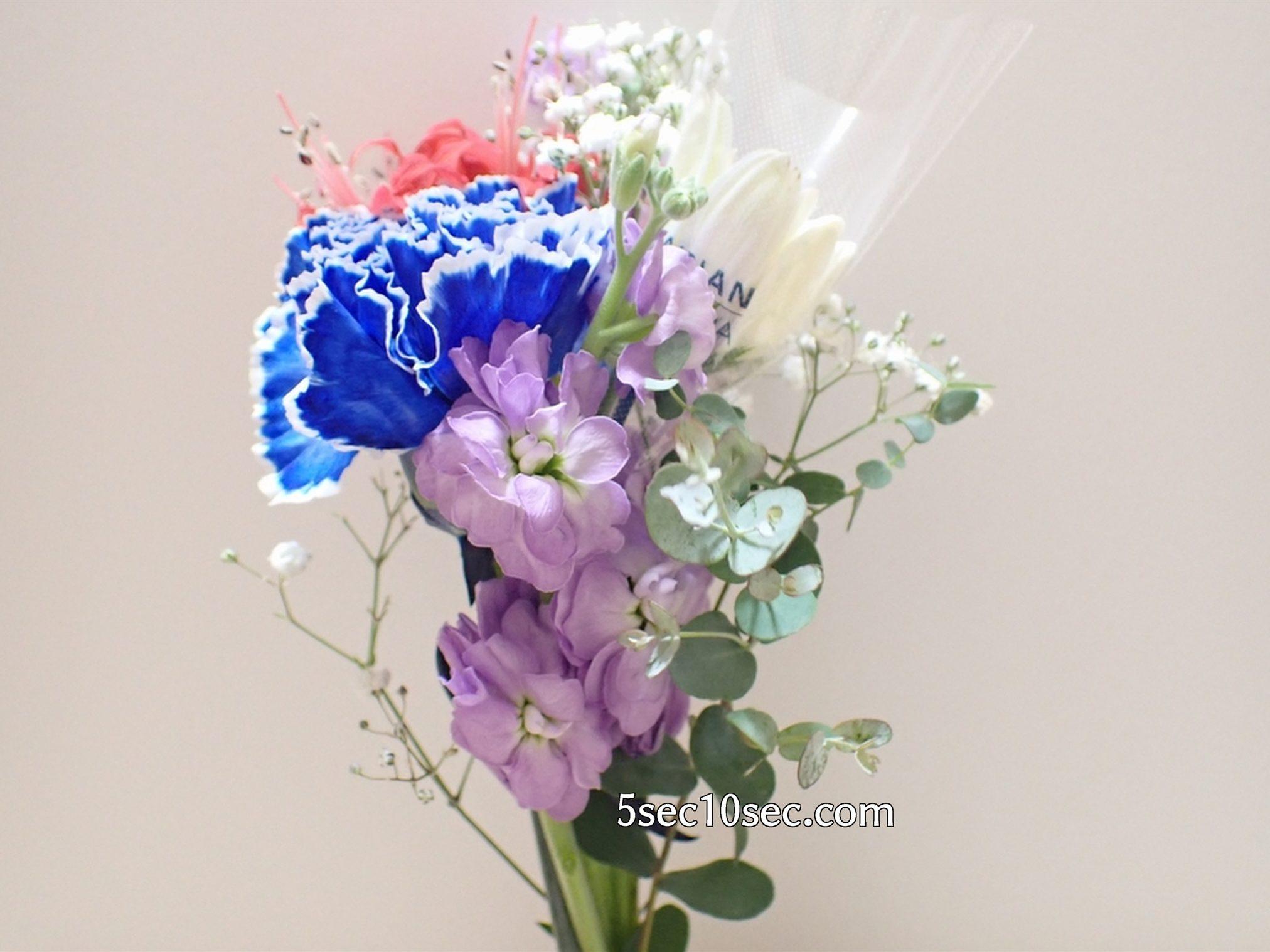 株式会社Crunch Style お花の定期便 Bloomee LIFE ブルーミーライフ 800円のレギュラープラン ダイヤモンドリリー、ガーベラ、ストック、染めカーネーション(青)、カスミソウ、グニユーカリの合計で6種類のお花とグリーンが届きました