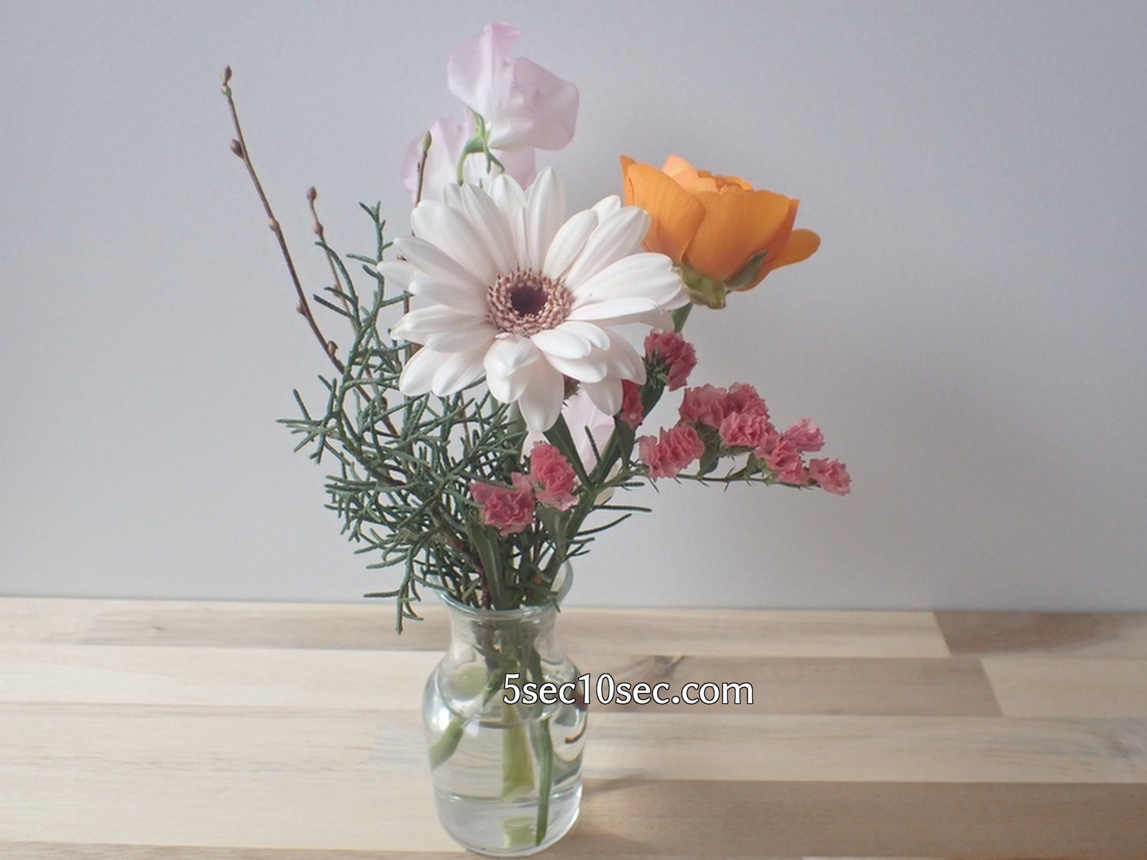 株式会社Crunch Style お花の定期便 Bloomee LIFE ブルーミーライフ 800円のレギュラープラン 3日目の写真