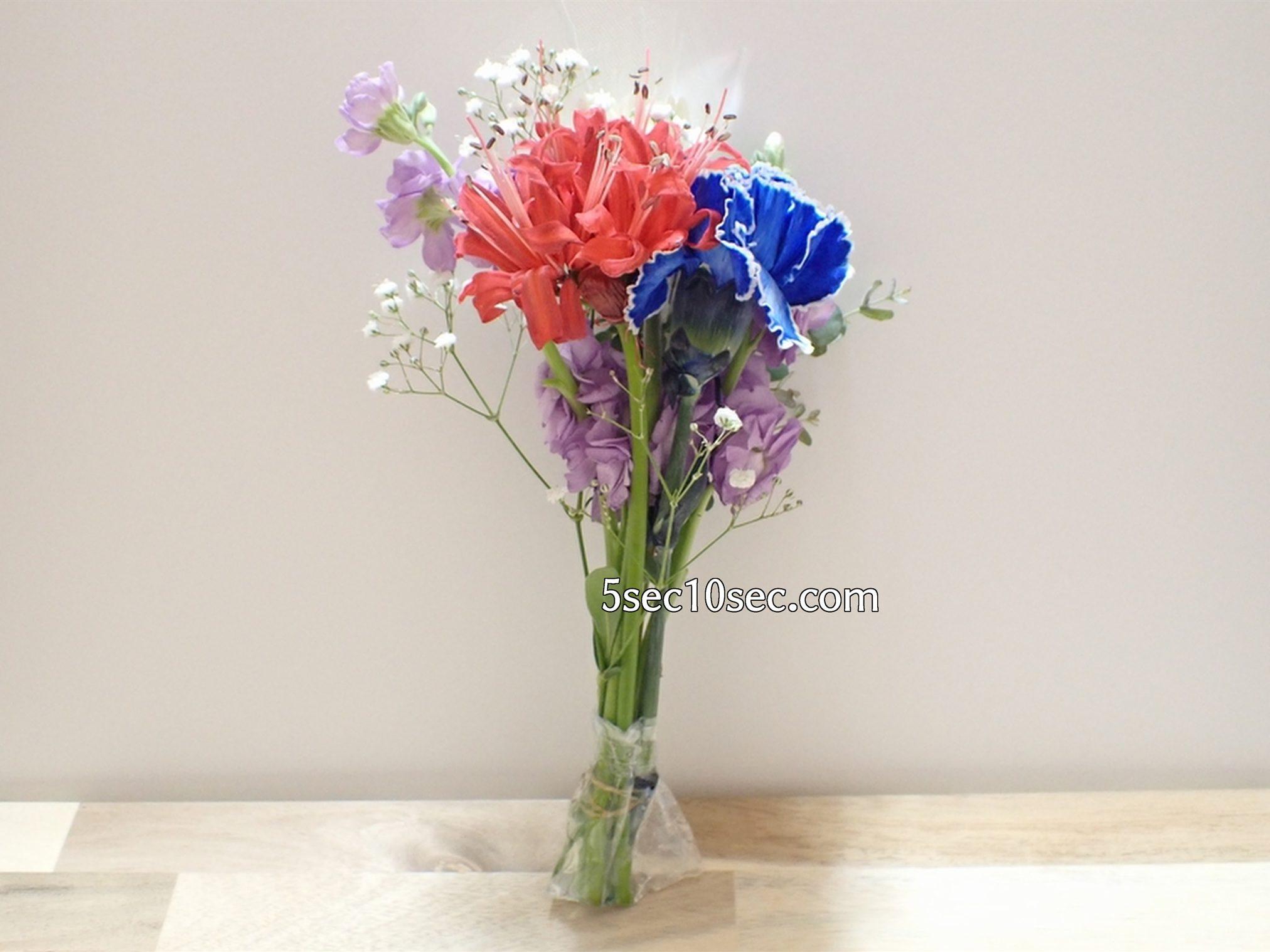 株式会社Crunch Style お花の定期便 Bloomee LIFE ブルーミーライフ 800円のレギュラープランで届いたお花、届いた物の全て