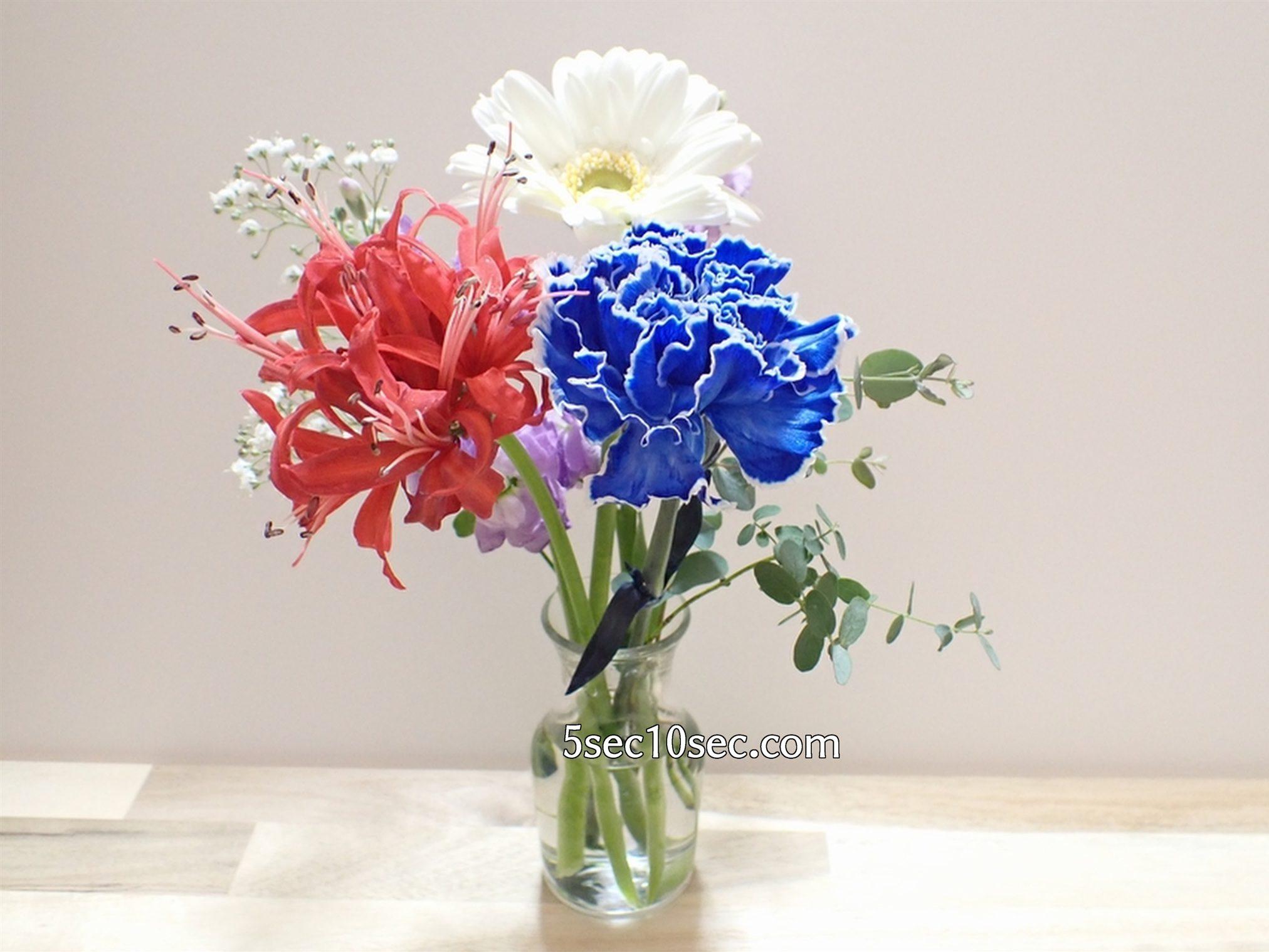 株式会社Crunch Style お花の定期便 Bloomee LIFE ブルーミーライフ 800円のレギュラープラン 3回目に届いたお花です、届いた1日目の写真、届いた時から元気です