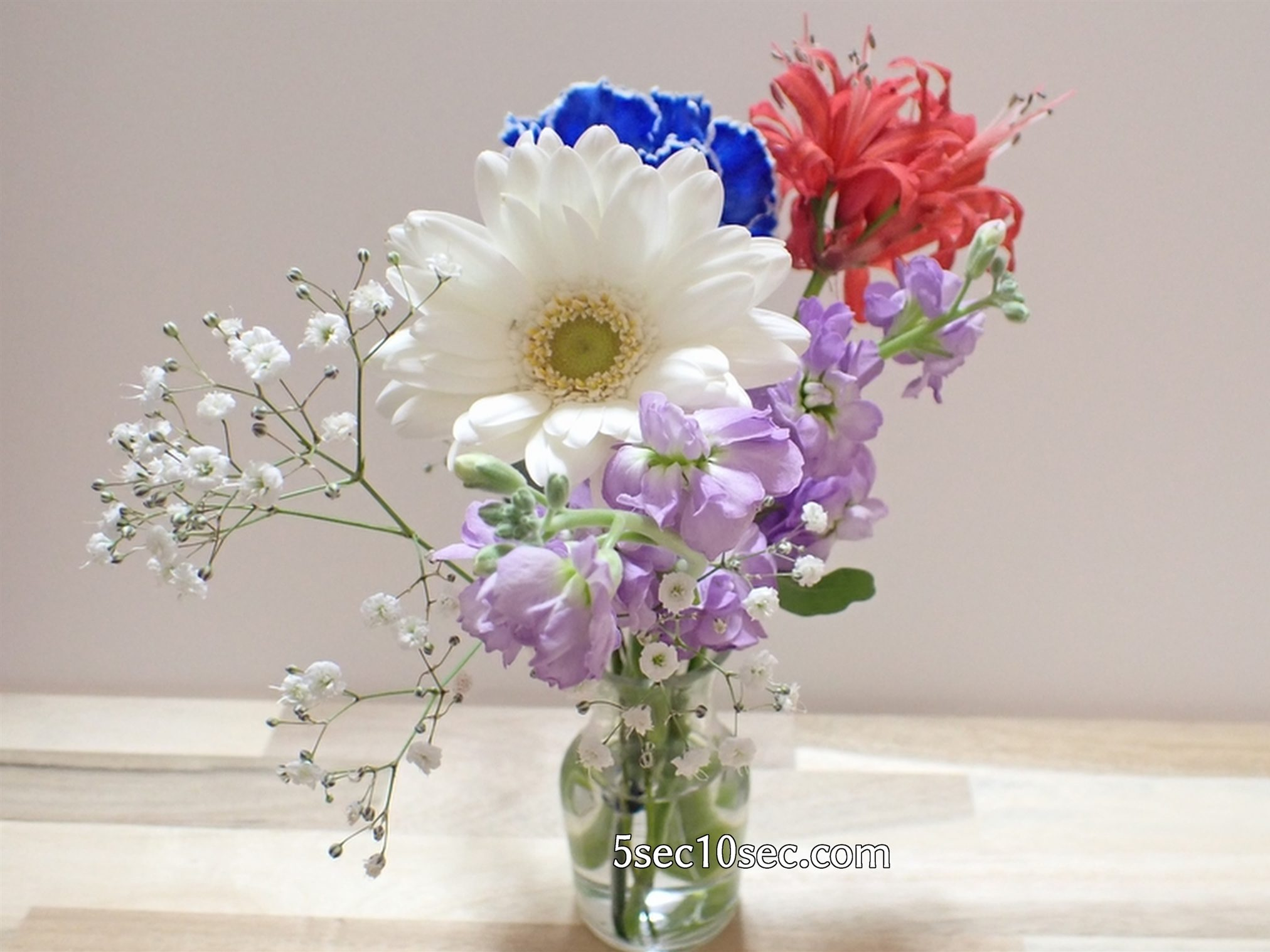 株式会社Crunch Style お花の定期便 Bloomee LIFE ブルーミーライフ 800円のレギュラープラン 花瓶の向きはどちらを前にしても、どの角度から見ても綺麗です