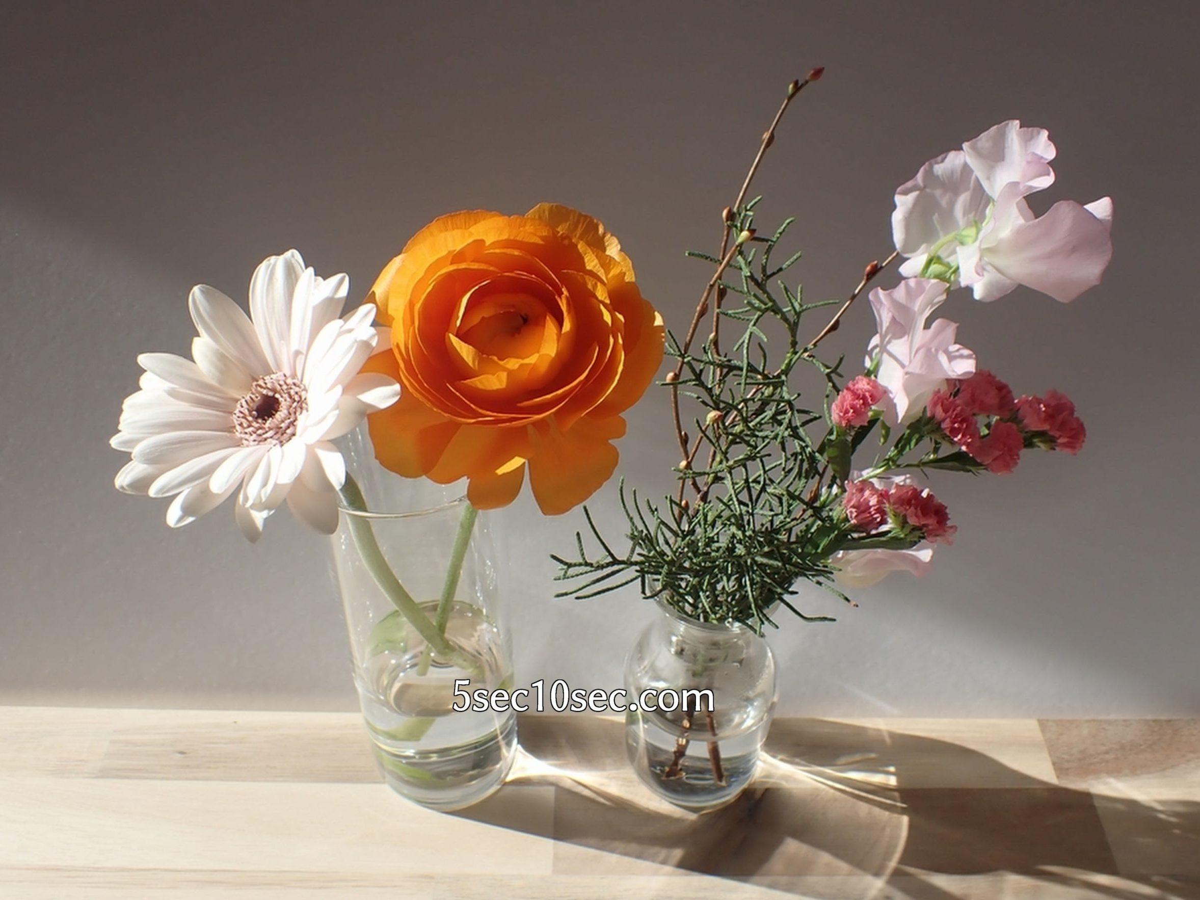 株式会社Crunch Style お花の定期便 Bloomee LIFE ブルーミーライフ レギュラープラン 1週間目のお花の状態、2週間くらいは届いた時のような綺麗な状態を楽しめます