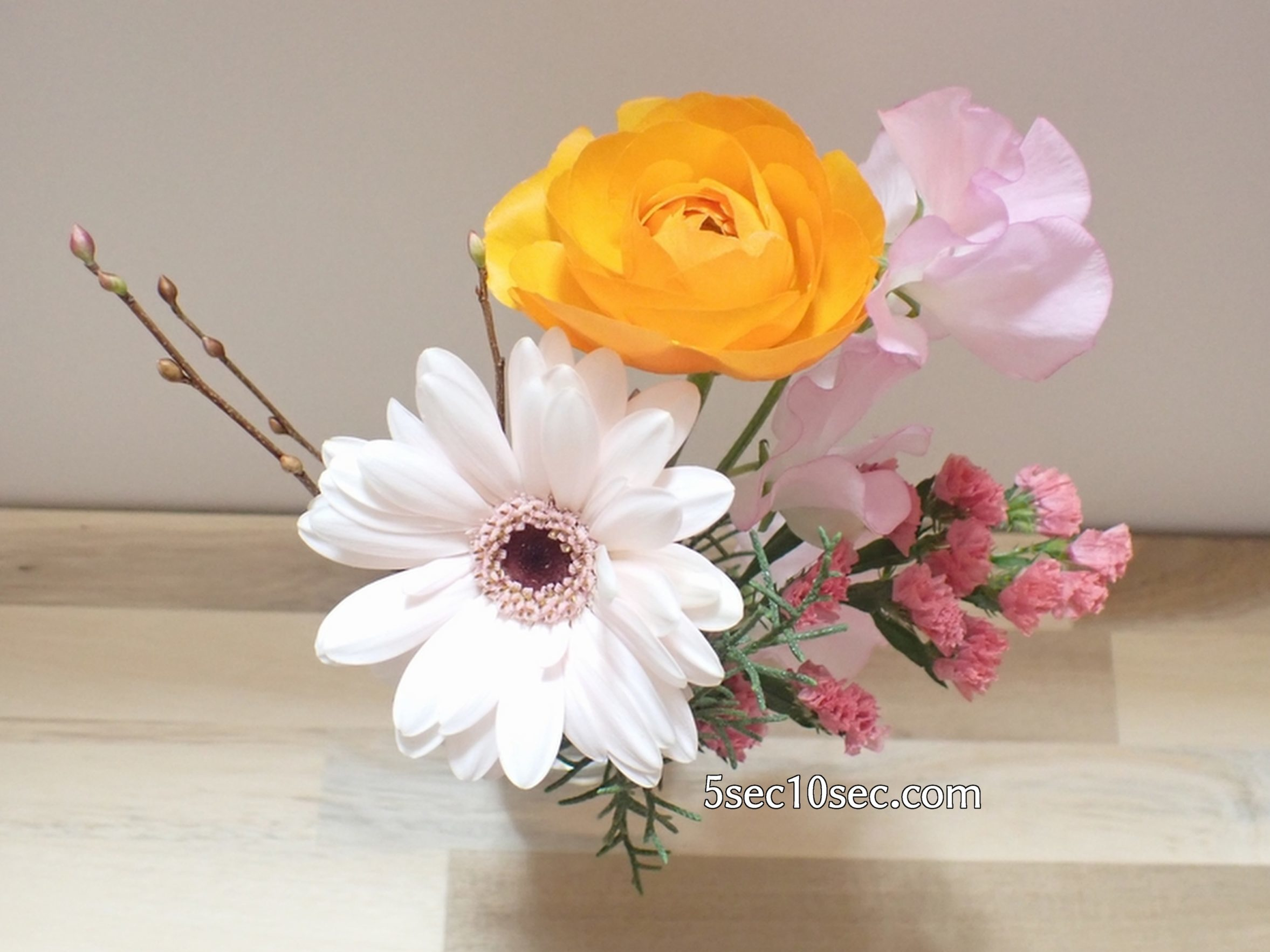 株式会社Crunch Style お花の定期便 Bloomee LIFE ブルーミーライフ 800円のレギュラープラン ガーベラ ココットを前に持ってきた写真
