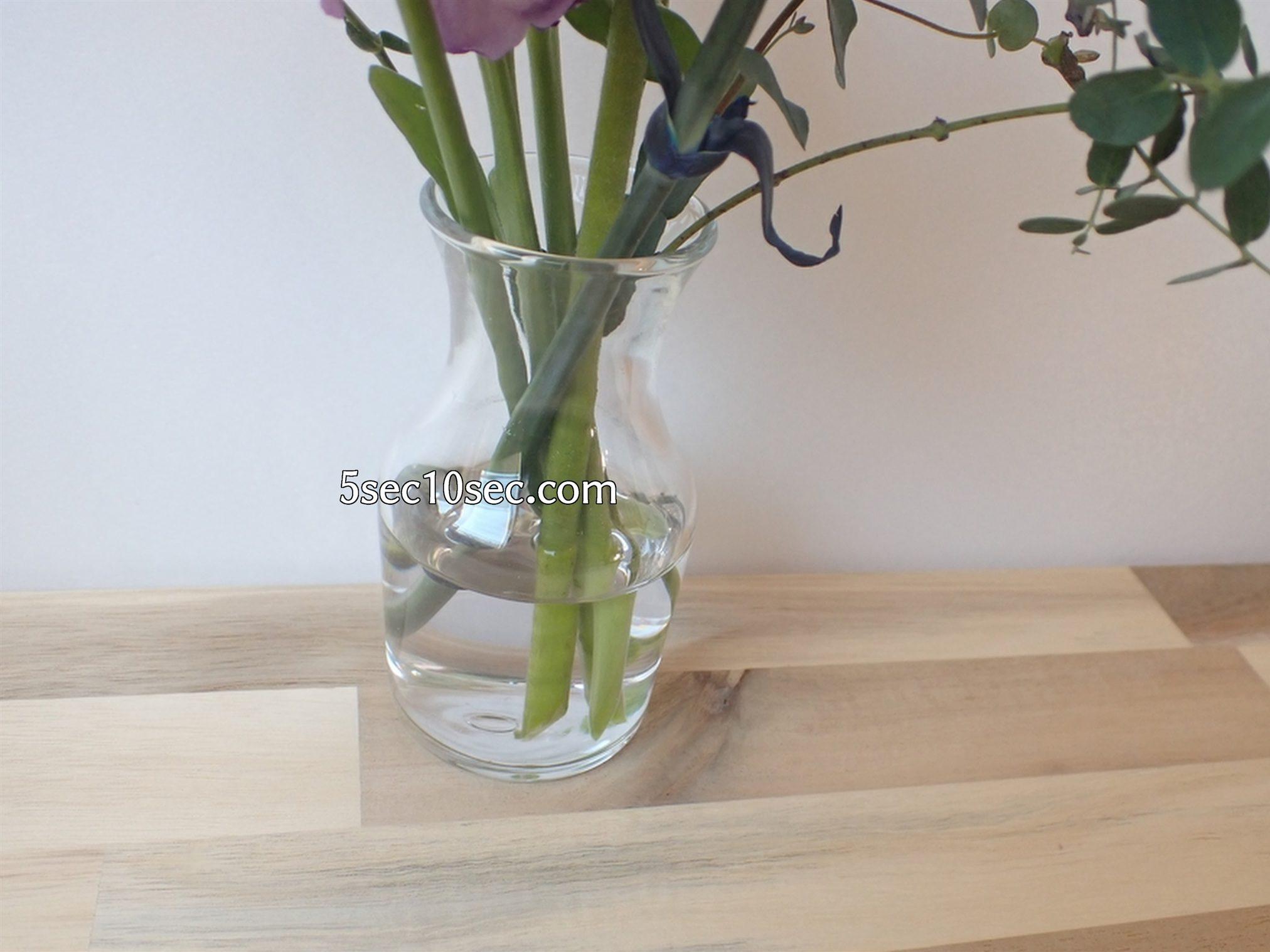 株式会社Crunch Style お花の定期便 Bloomee LIFE ブルーミーライフ 800円のレギュラープラン お花のお手入れ、お世話、お花の栄養剤が足りない時にはどうしたら良いのか