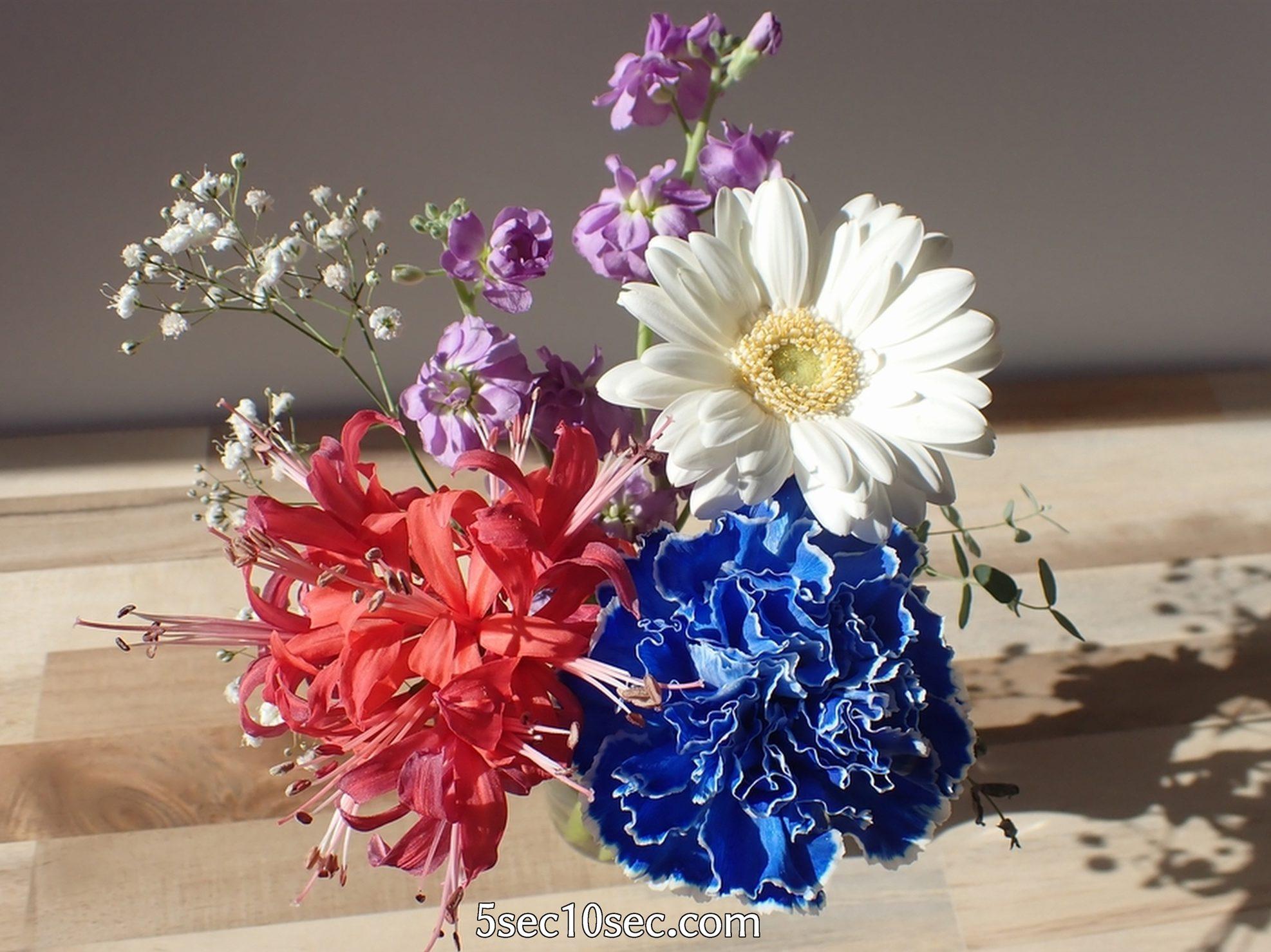 株式会社Crunch Style お花の定期便 Bloomee LIFE ブルーミーライフ 10日経っても綺麗な状態です、2週間は持つと思います