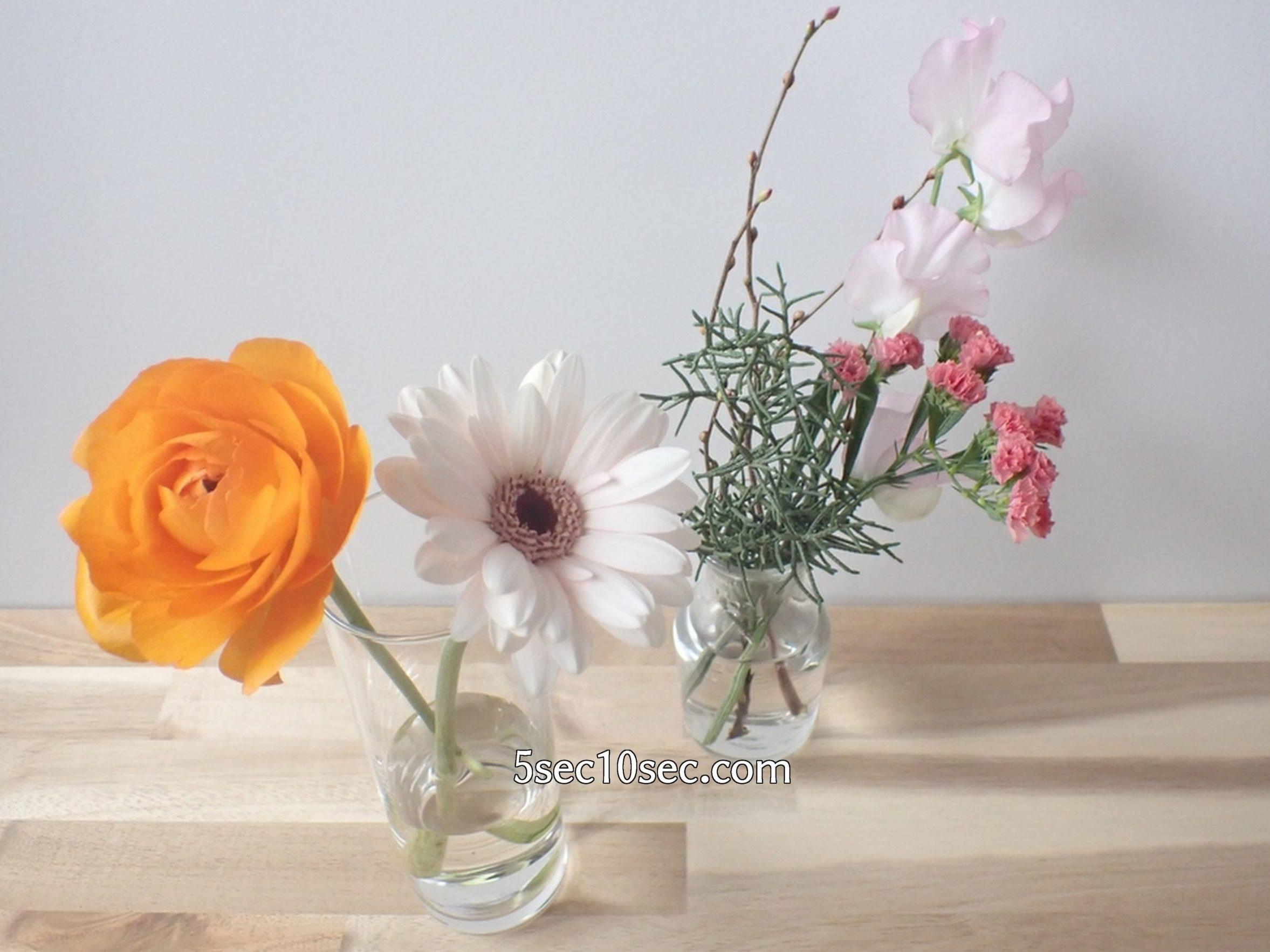株式会社Crunch Style お花の定期便 Bloomee LIFE ブルーミーライフ レギュラープラン 瓶をわけて生けるほうが簡単に飾れる