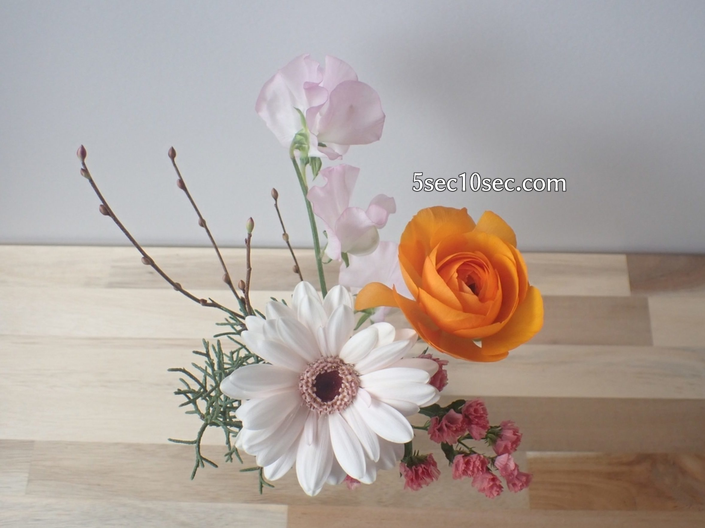 株式会社Crunch Style お花の定期便 Bloomee LIFE ブルーミーライフ 800円のレギュラープラン 上から撮った写真
