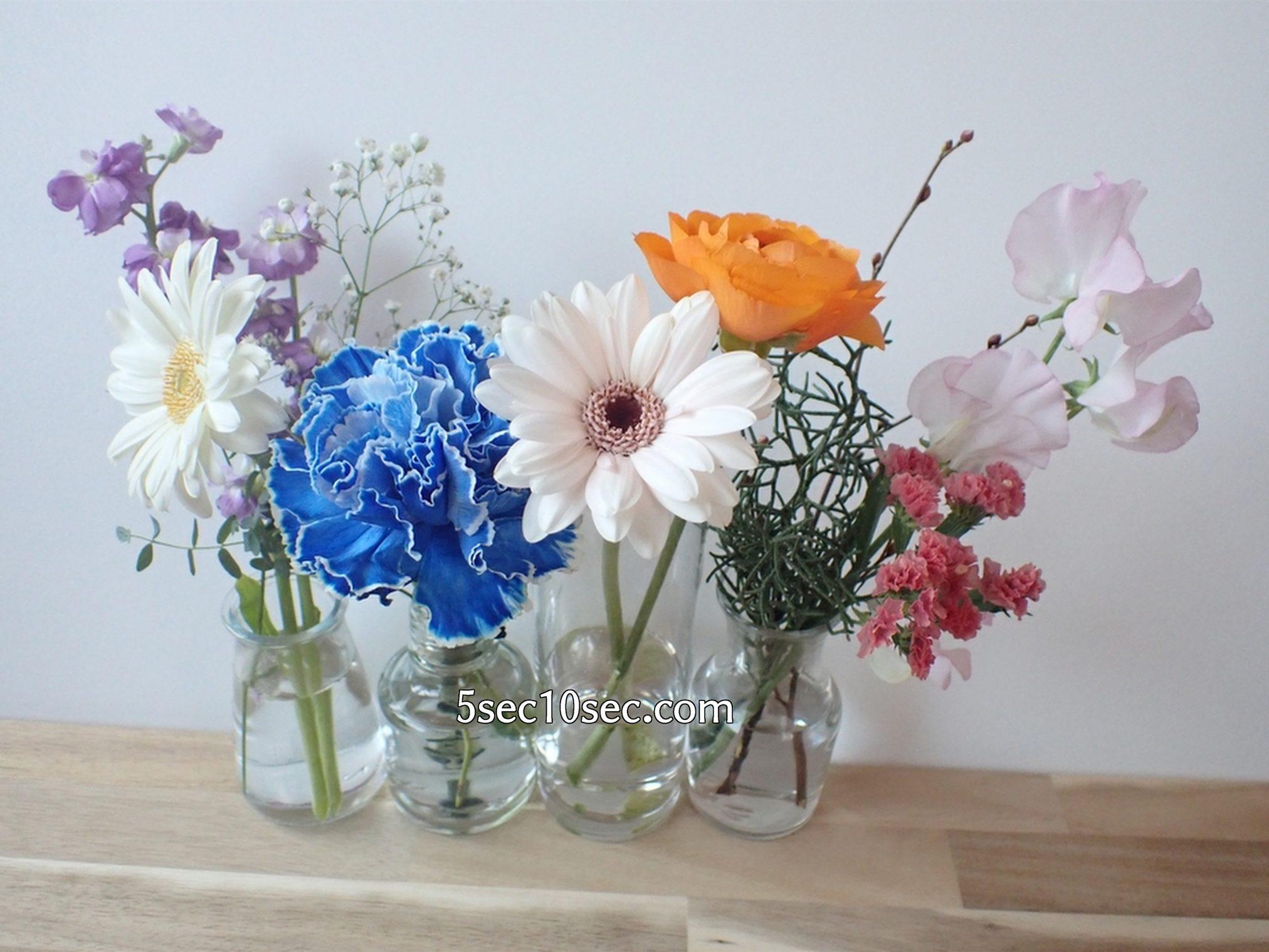 株式会社Crunch Style お花の定期便 Bloomee LIFE ブルーミーライフ レギュラープラン 隔週のお届けで2週間前の前回のお花と一緒に横に並べてみた