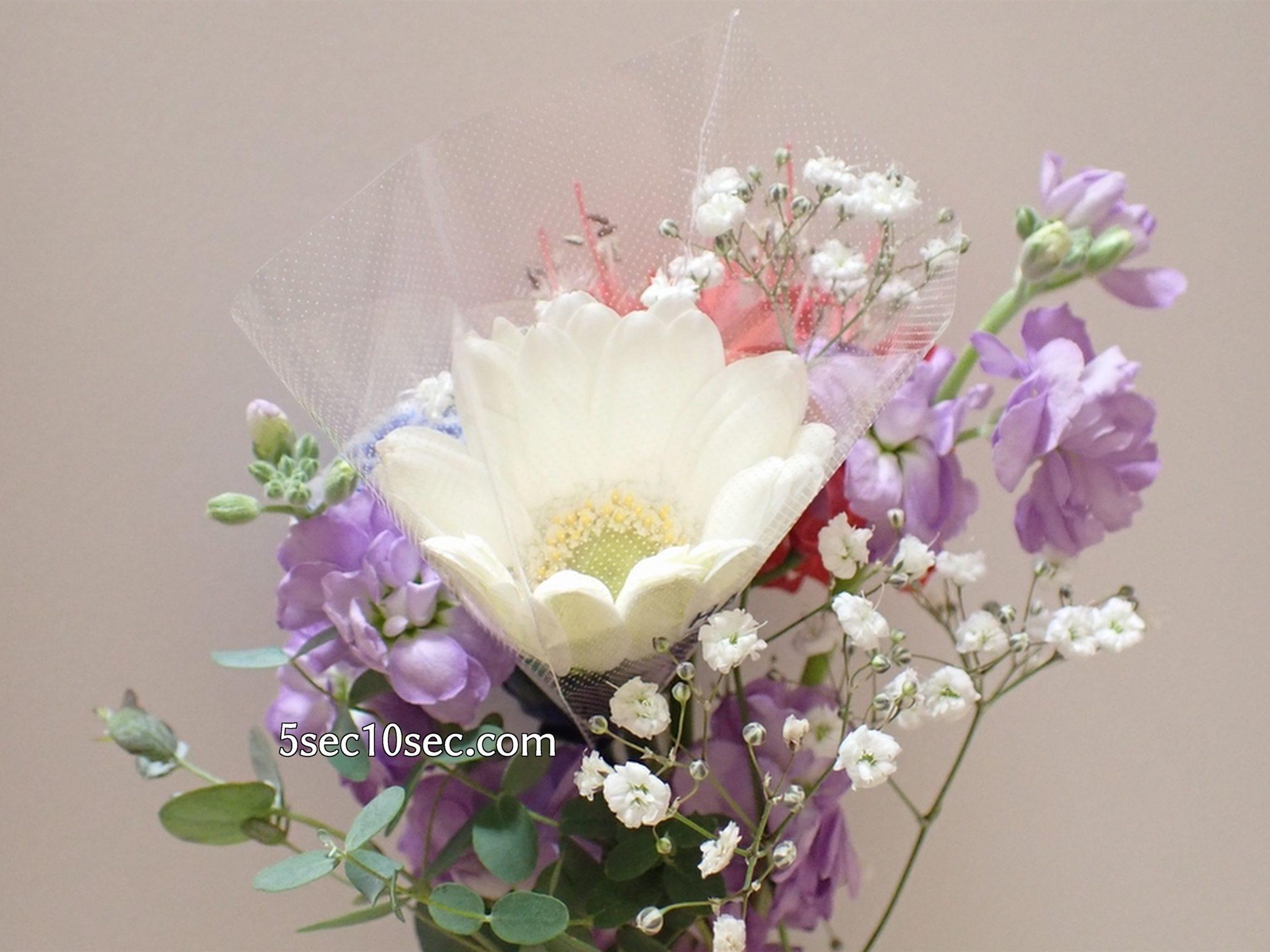株式会社Crunch Style お花の定期便 Bloomee LIFE ブルーミーライフ 800円のレギュラープラン 真っ白なガーベラは個別に保護された状態で届きました