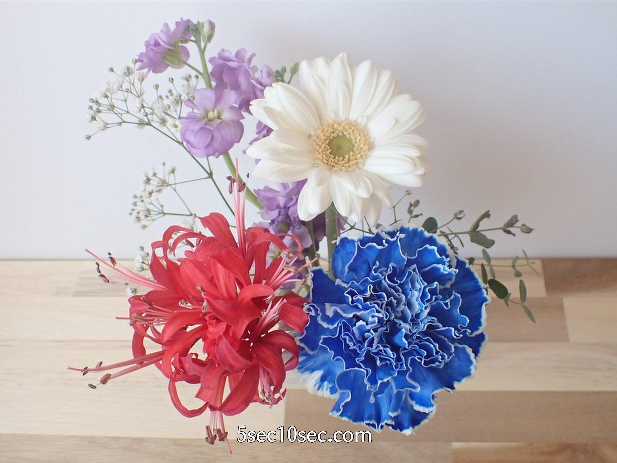 株式会社Crunch Style お花の定期便 Bloomee LIFE ブルーミーライフ 800円のレギュラープラン 届いてから5日目の写真です、どのくらい持つのかというとお手入れをしていれば2週間くらいは持ちます