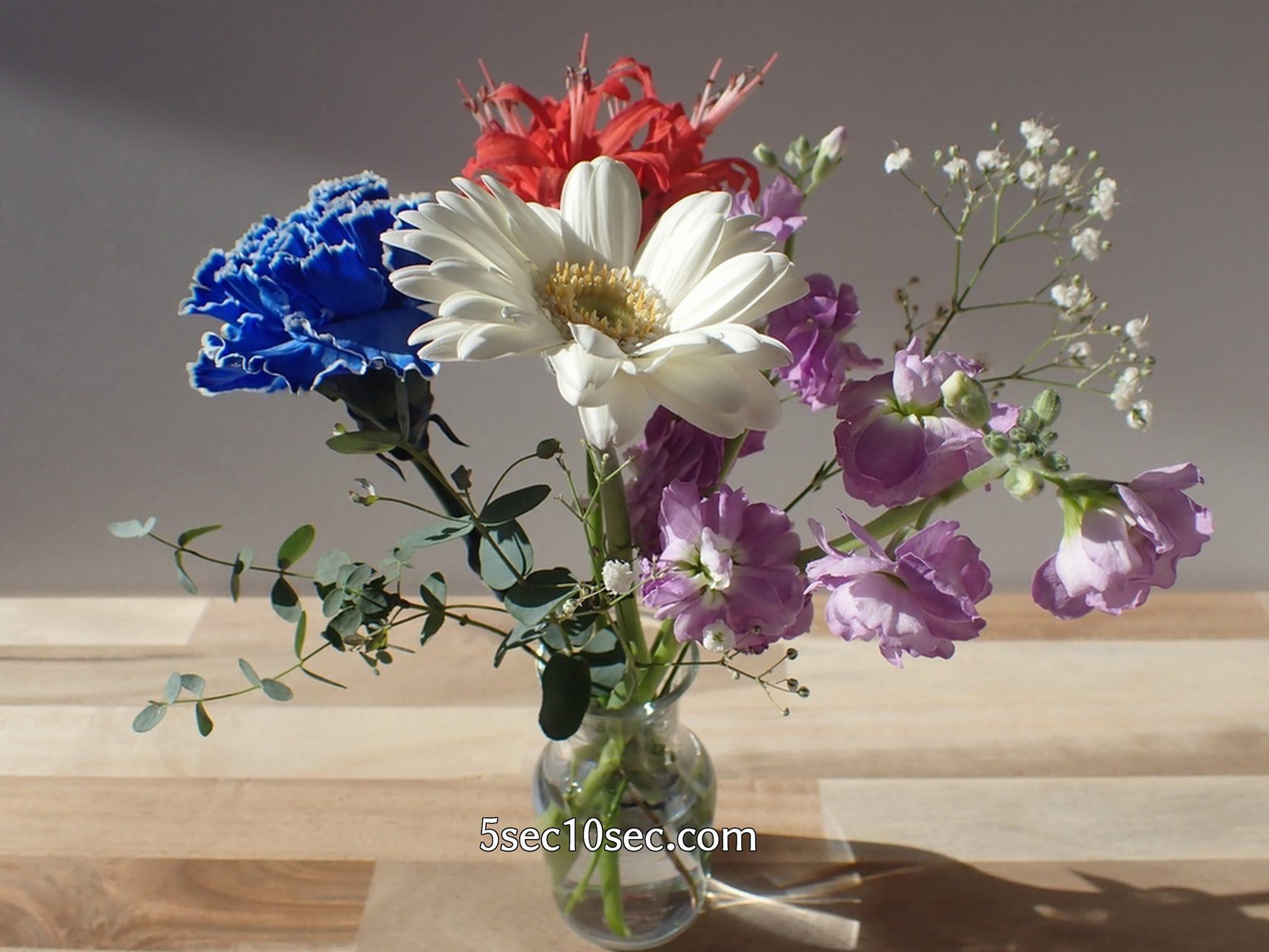 株式会社Crunch Style お花の定期便 Bloomee LIFE ブルーミーライフ 800円のレギュラープラン 花瓶の向きを変えてガーベラやストックを前にしても綺麗です