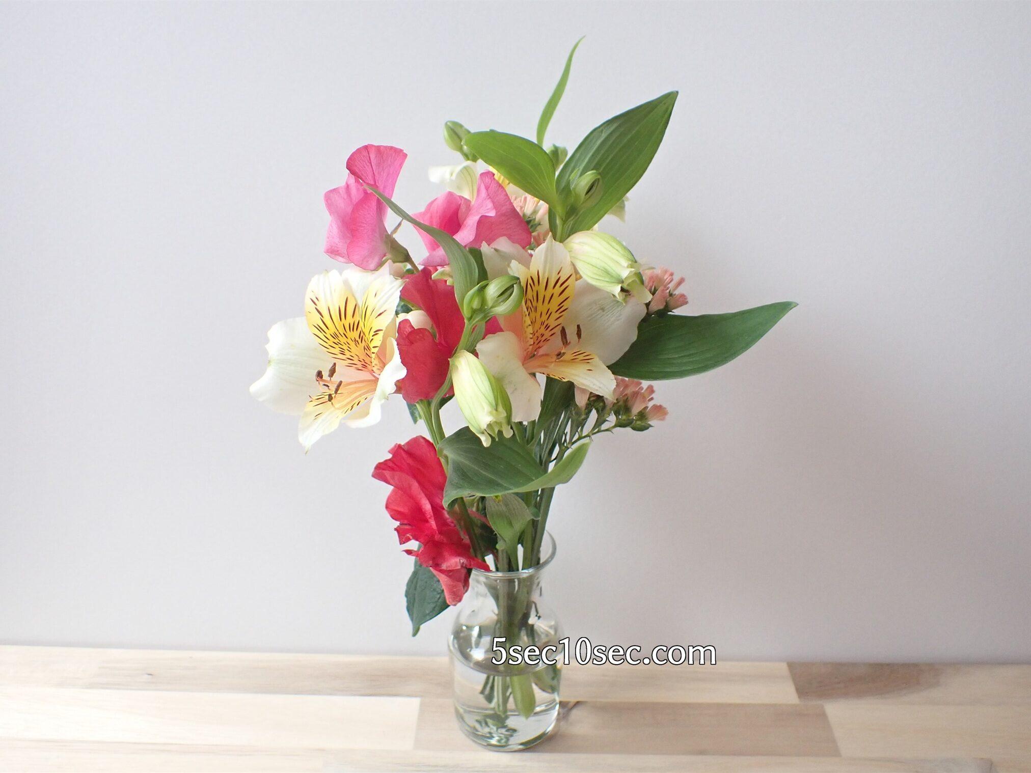 株式会社Crunch Style Bloomee LIFE(ブルーミーライフ)レギュラープラン 二週間ほど経過してもお花は綺麗な状態です