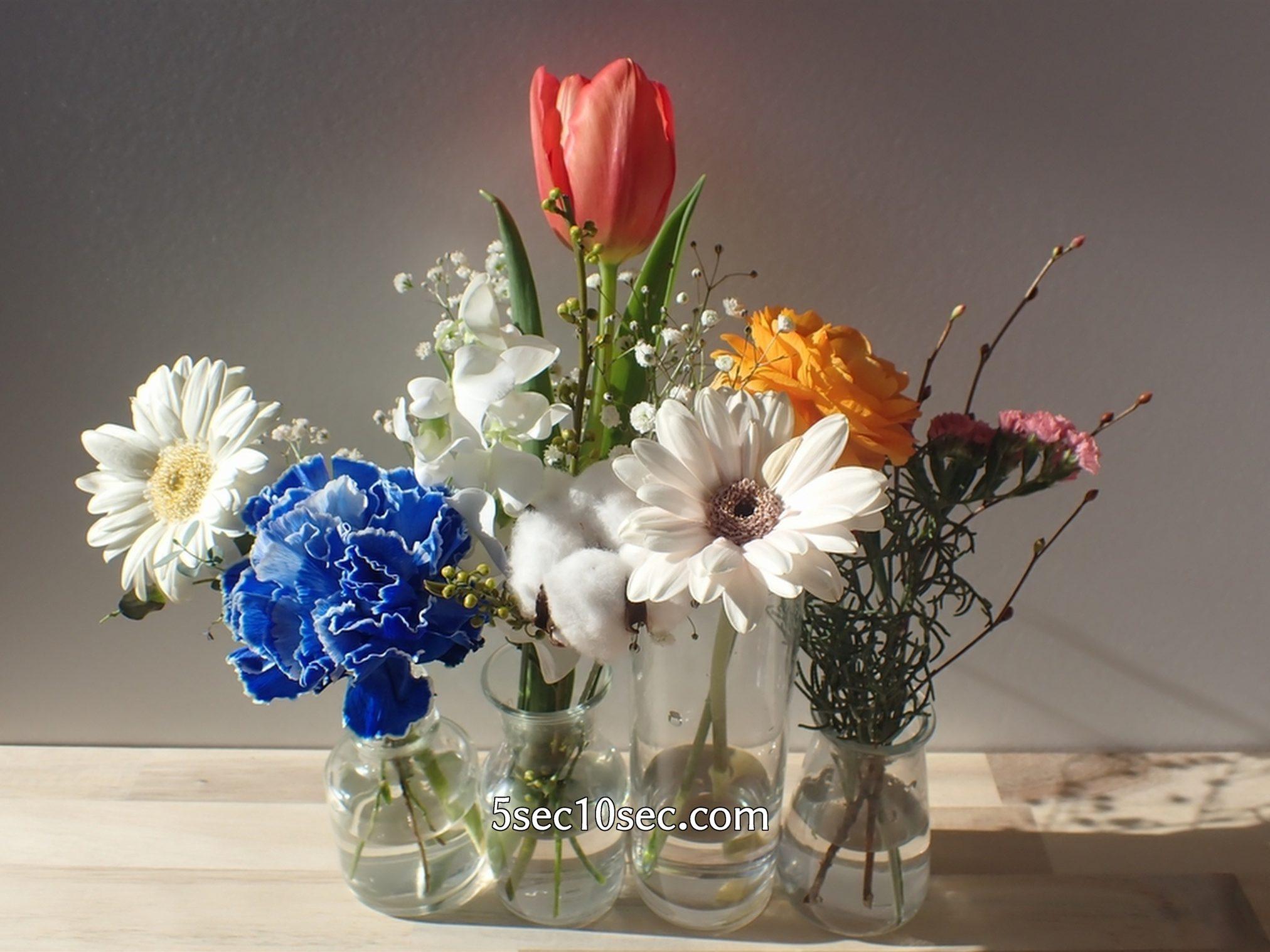 株式会社Crunch Style お花の定期便 Bloomee LIFE ブルーミーライフ 前回、前々回のお花と一緒に飾ってみた