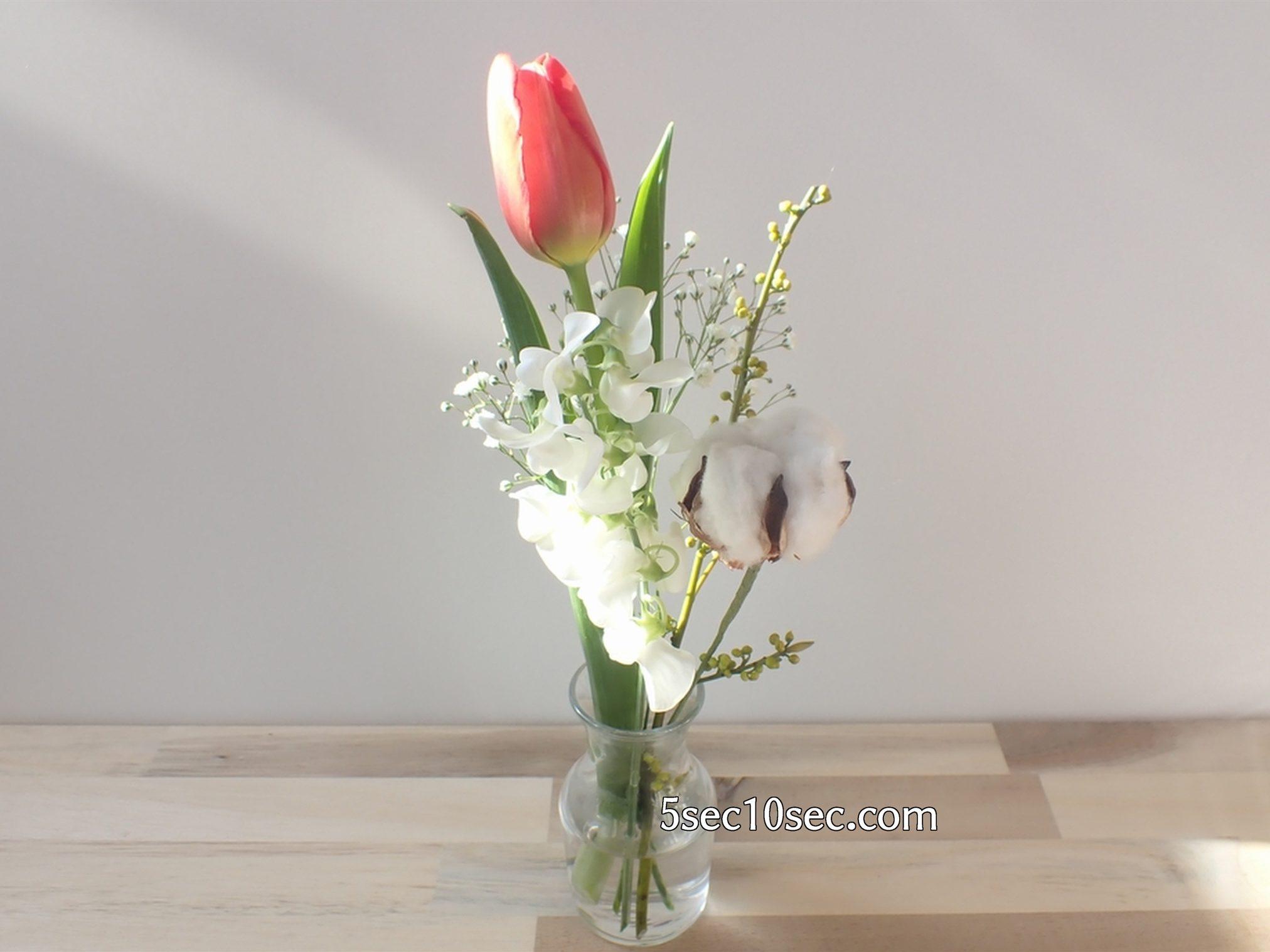 株式会社Crunch Style お花の定期便 Bloomee LIFE ブルーミーライフ 届いてから3日目のお花の状態、初日よりも元気です