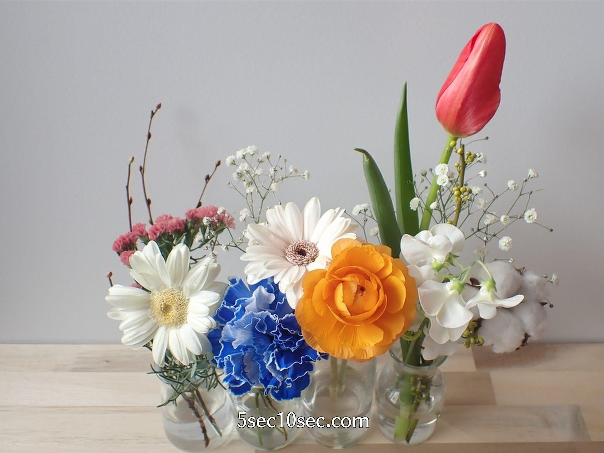 株式会社Crunch Style お花の定期便 Bloomee LIFE ブルーミーライフ 届いてから6日目のお花の状態、暗いところに置いておいたからチューリップのつぼみが閉じている