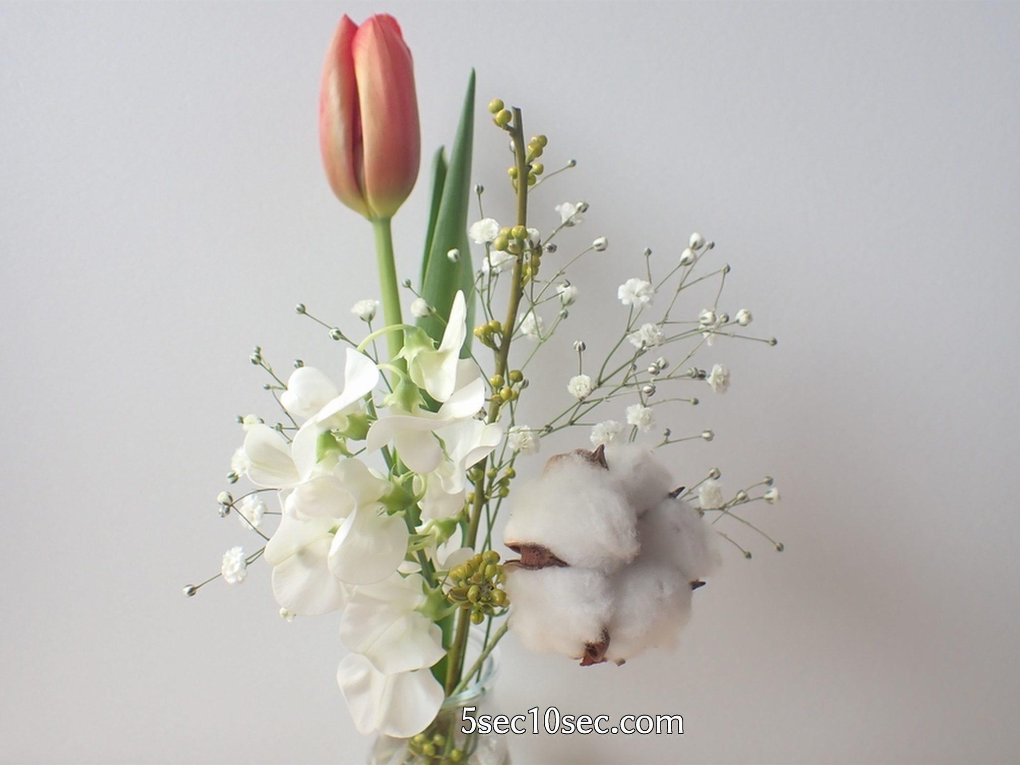 株式会社Crunch Style お花の定期便 Bloomee LIFE ブルーミーライフ 届いてからお手入れをして1日休ませたお花の状態
