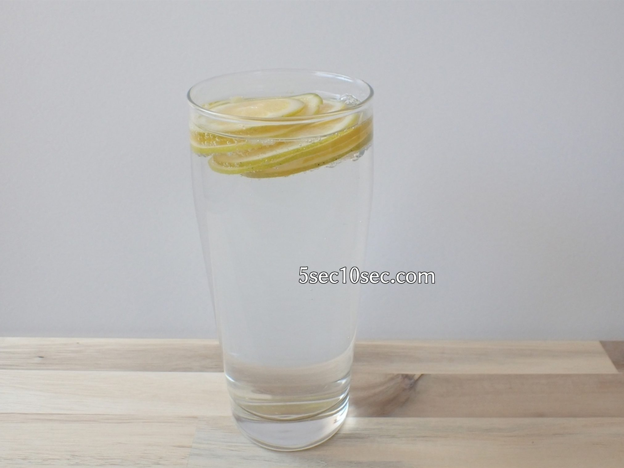 宝酒造 こだわりのレモンサワー用 宝焼酎 冷凍レモンを使えばお手軽に楽しめる
