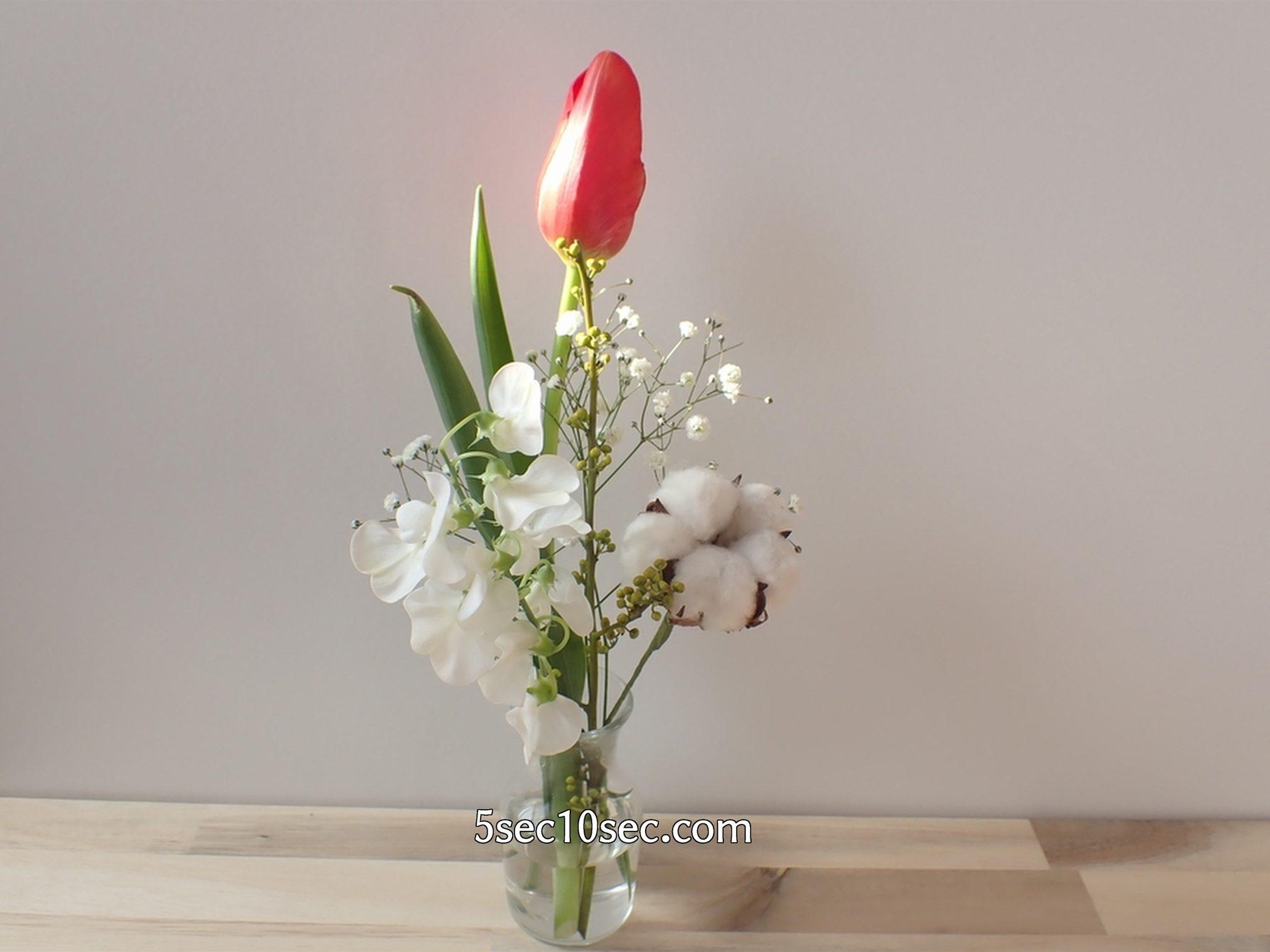 株式会社Crunch Style お花の定期便 Bloomee LIFE ブルーミーライフ 6日目、蕾が閉じた状態のチューリップ