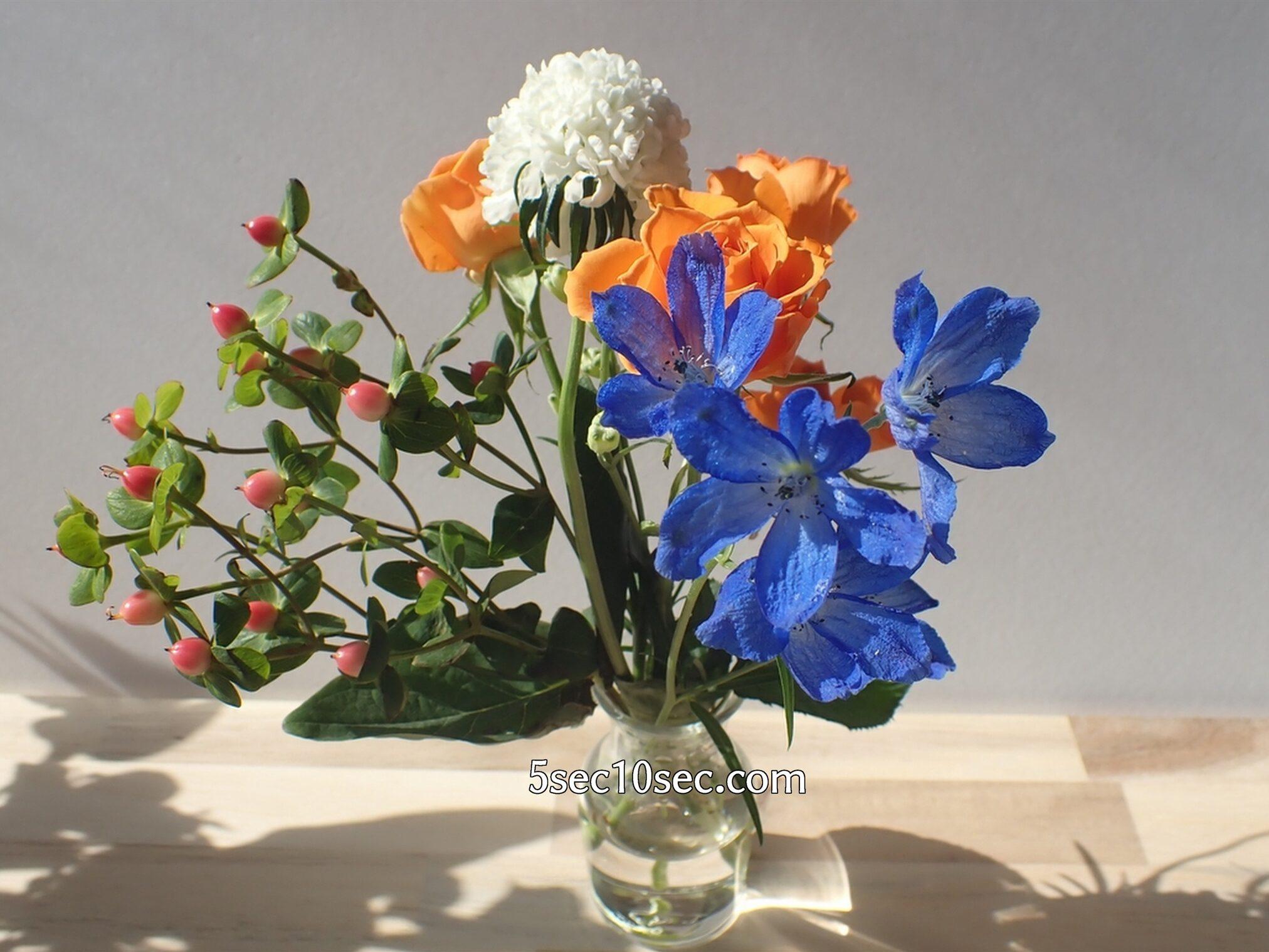 Bloomee LIFE(ブルーミーライフ)レギュラープラン 今週のお花 赤い実のヒペリカム キャンディフレアーや、スプレーデルフィニウムも素敵