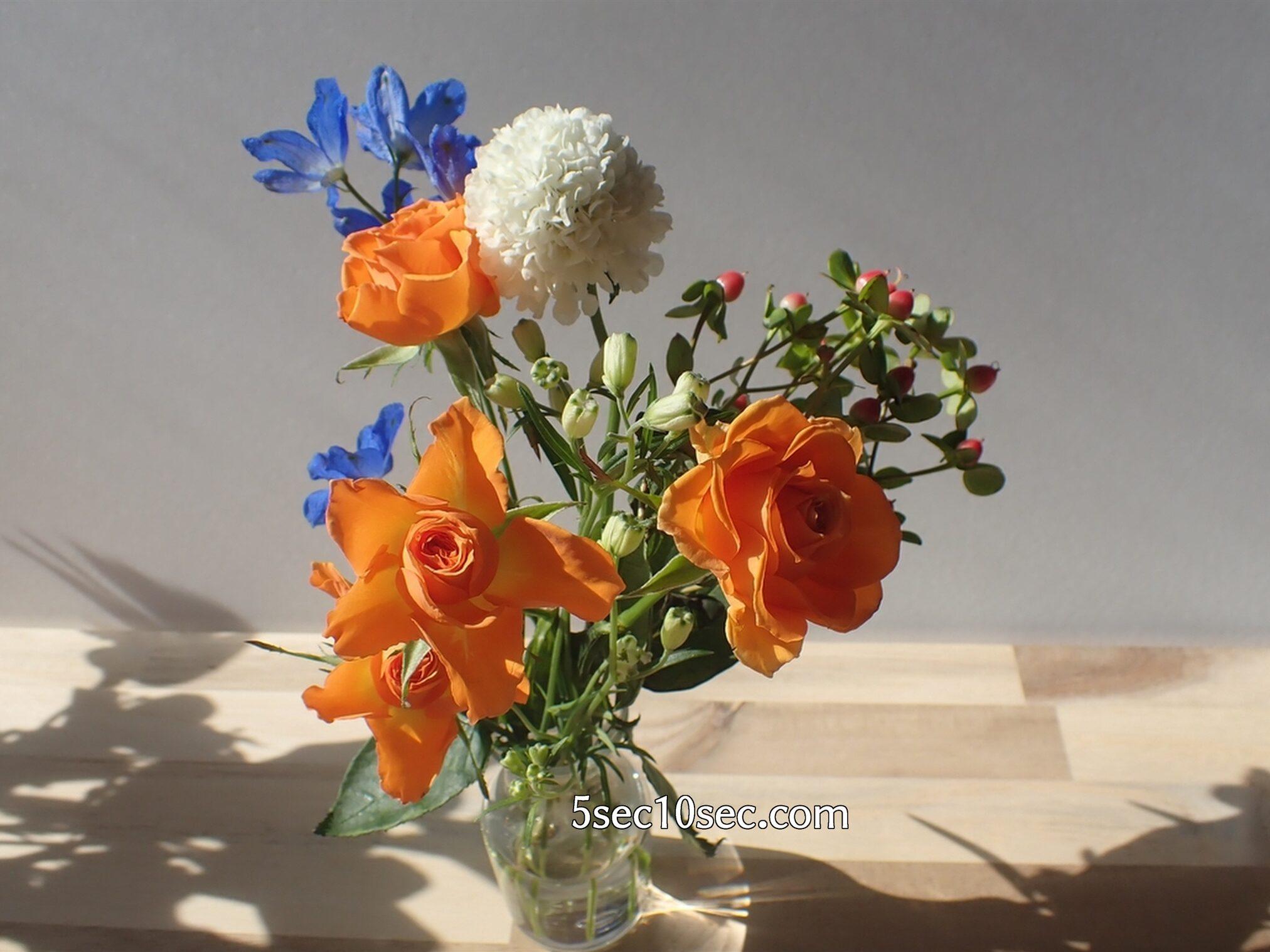 Bloomee LIFE(ブルーミーライフ)レギュラープラン 今週のお花 同じお花で、咲いているものと、つぼみのものを組み合わせたフラワーアレンジ