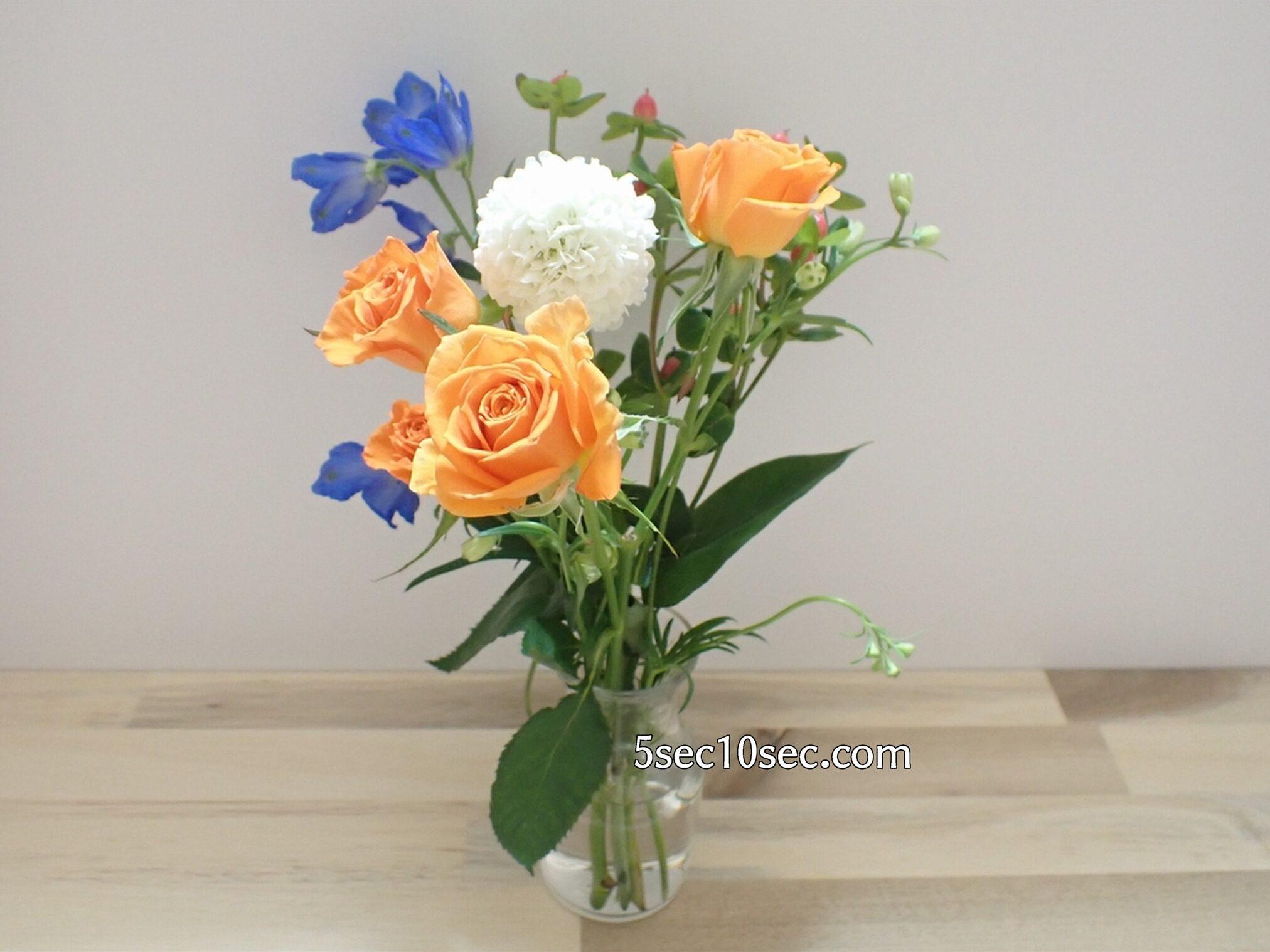 Bloomee LIFE(ブルーミーライフ)レギュラープラン 今週のお花 届いたらお手入れをして休ませる
