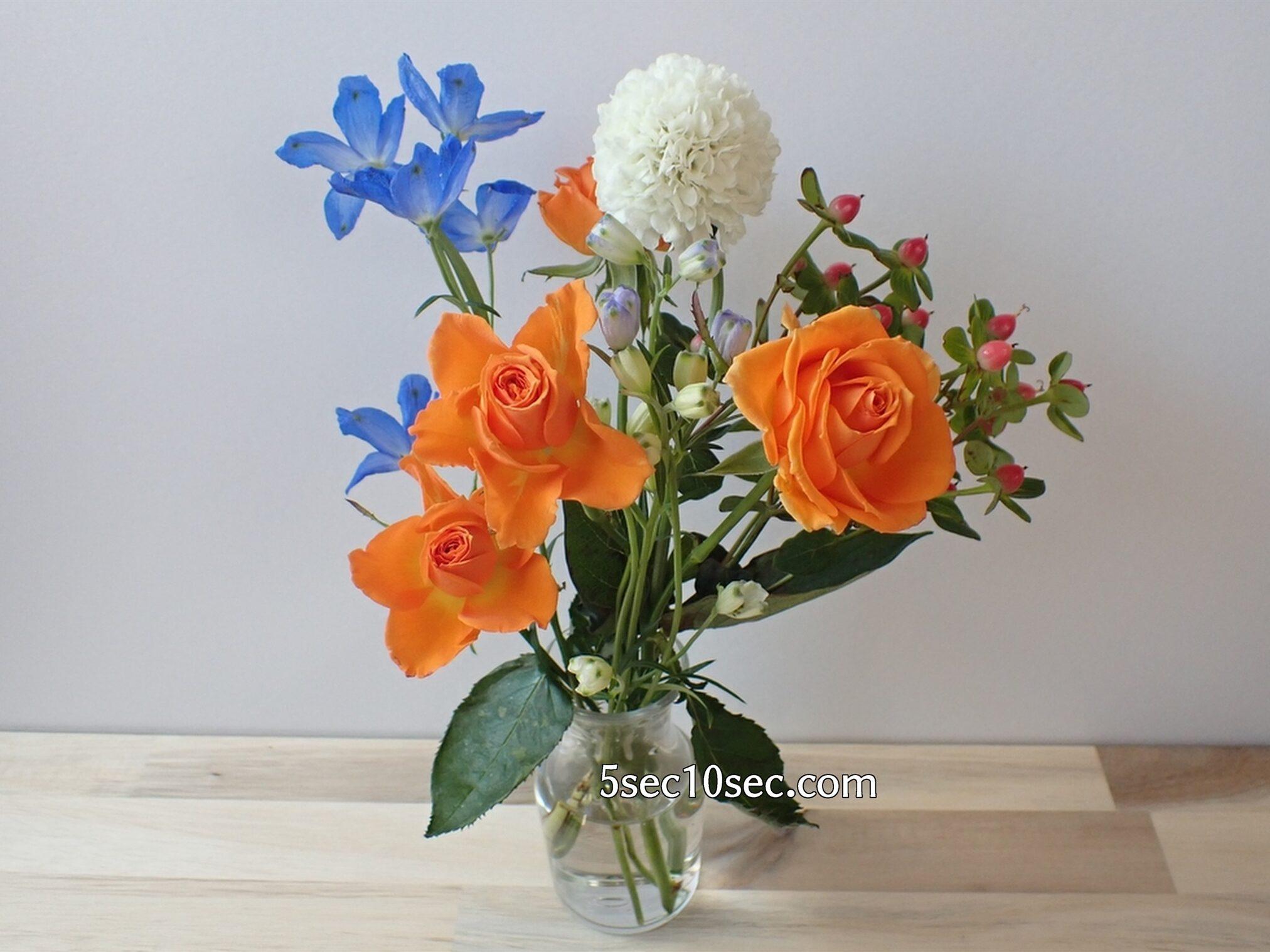 Bloomee LIFE(ブルーミーライフ)レギュラープラン 今週のお花 届いてから9日目の写真