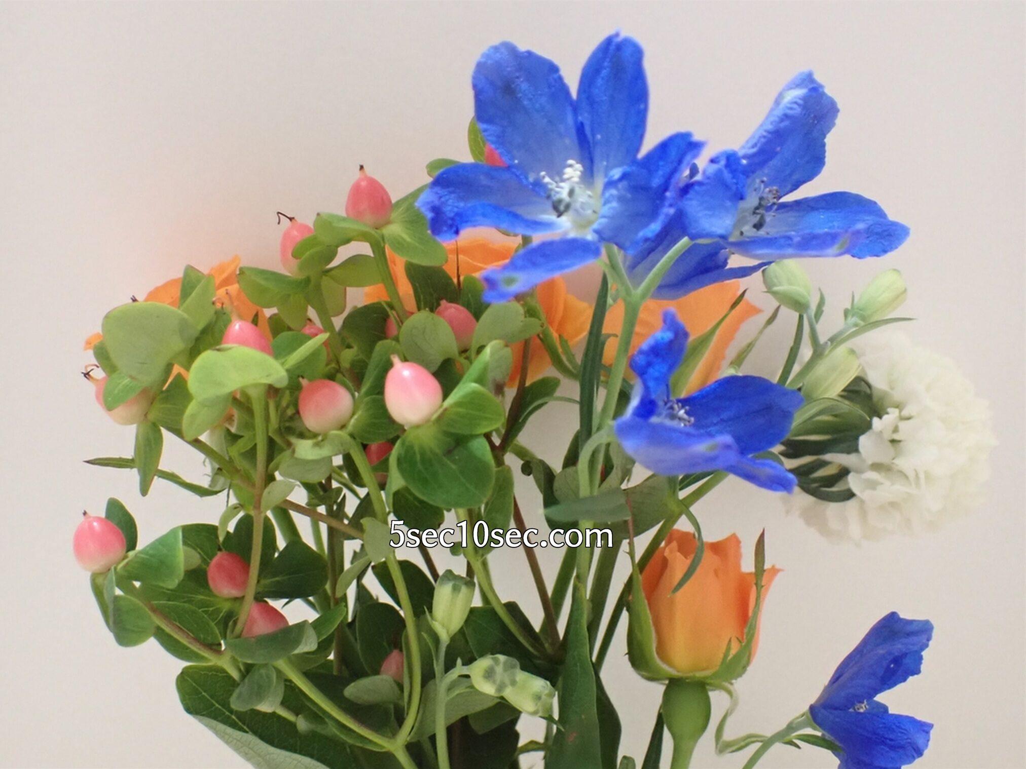 Bloomee LIFE(ブルーミーライフ)レギュラープラン 今週のお花 色んな種類のお花で作られたブーケ