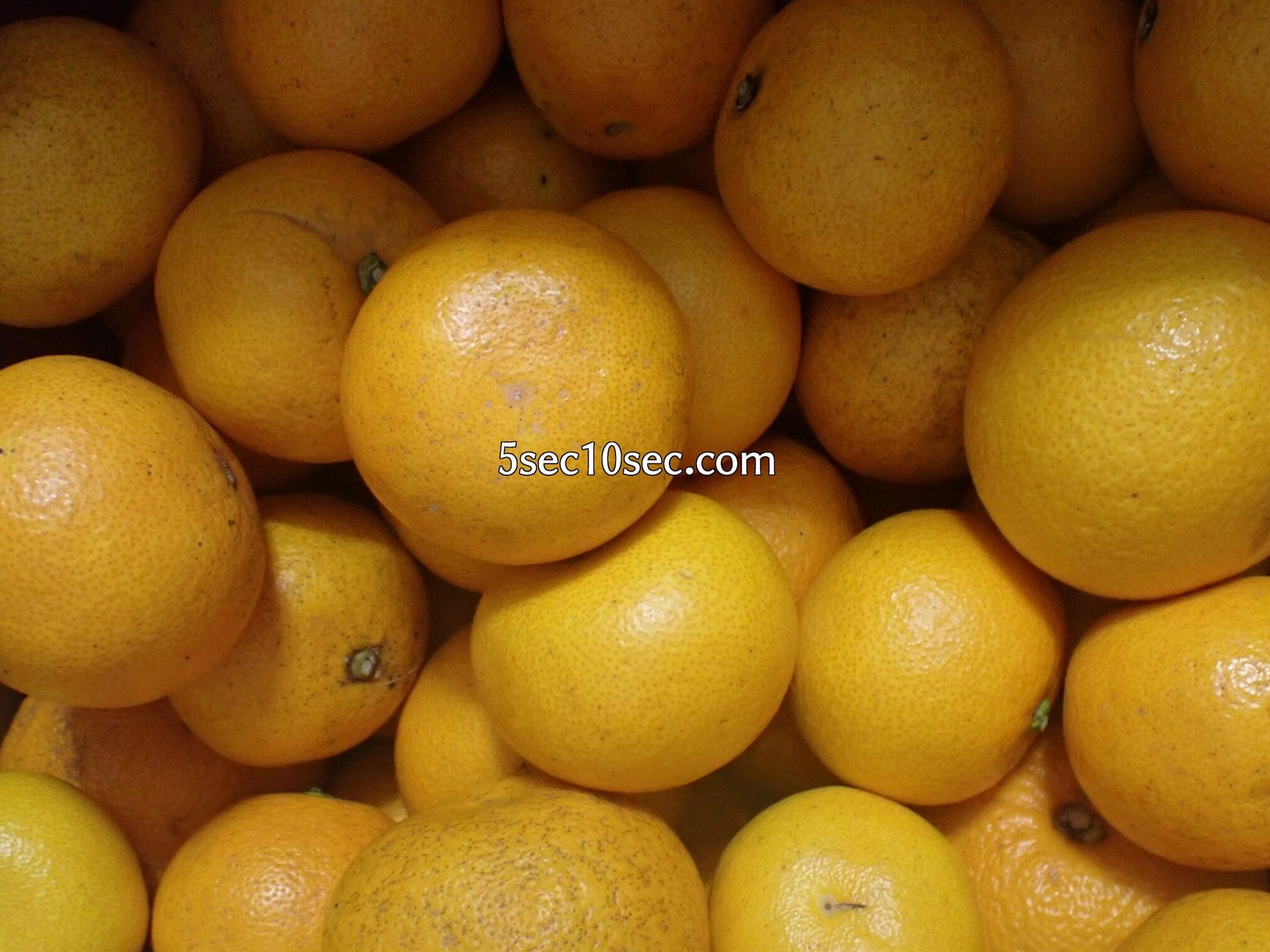 訳あり10kgの八朔を買ってみた、柑橘、はっさく、訳ありフルーツ
